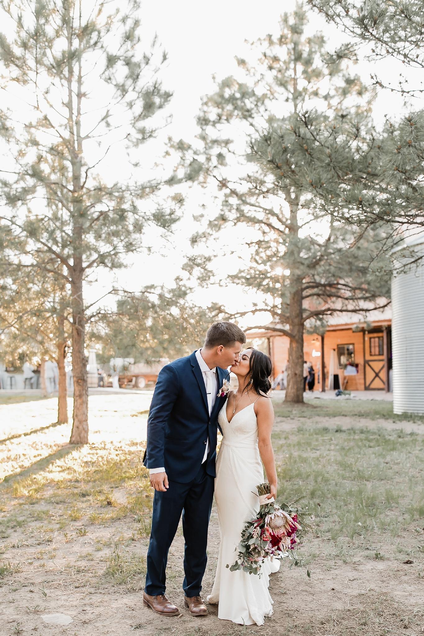 Alicia+lucia+photography+-+albuquerque+wedding+photographer+-+santa+fe+wedding+photography+-+new+mexico+wedding+photographer+-+new+mexico+wedding+-+new+mexico+wedding+-+barn+wedding+-+enchanted+vine+barn+wedding+-+ruidoso+wedding_0129.jpg