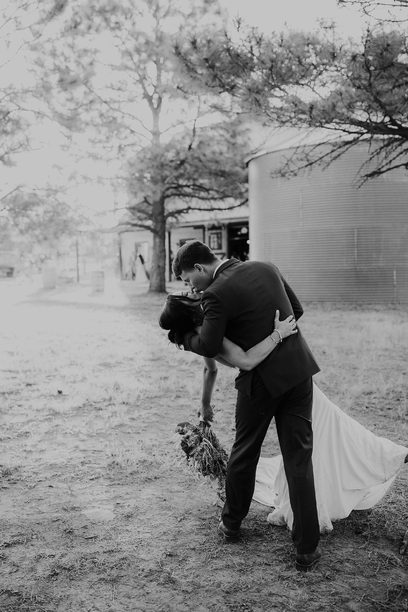 Alicia+lucia+photography+-+albuquerque+wedding+photographer+-+santa+fe+wedding+photography+-+new+mexico+wedding+photographer+-+new+mexico+wedding+-+new+mexico+wedding+-+barn+wedding+-+enchanted+vine+barn+wedding+-+ruidoso+wedding_0130.jpg