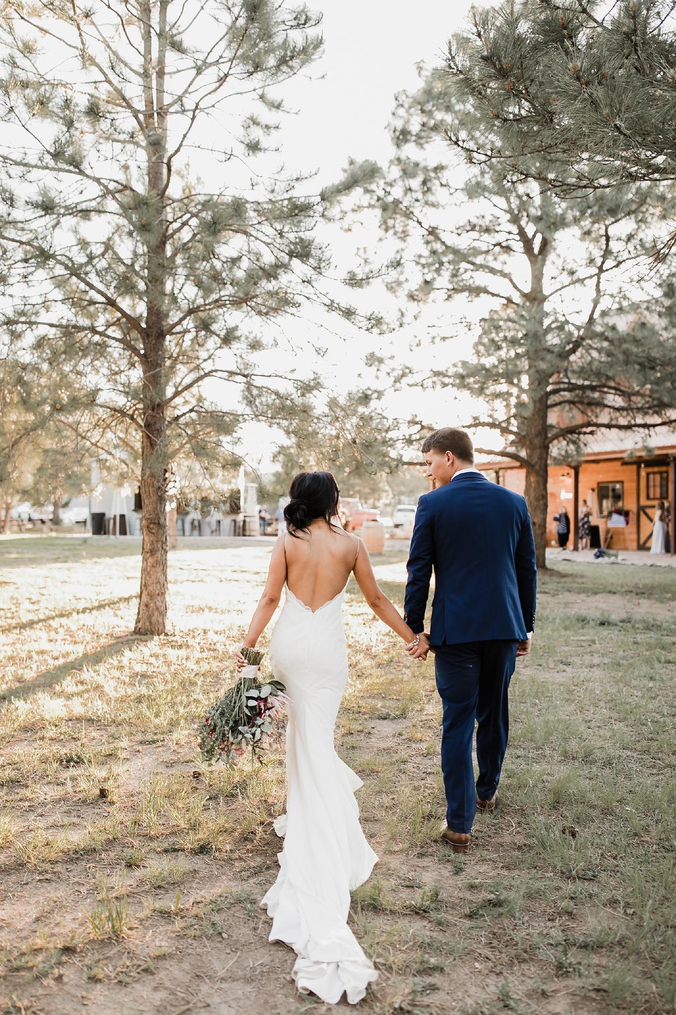 Alicia+lucia+photography+-+albuquerque+wedding+photographer+-+santa+fe+wedding+photography+-+new+mexico+wedding+photographer+-+new+mexico+wedding+-+new+mexico+wedding+-+barn+wedding+-+enchanted+vine+barn+wedding+-+ruidoso+wedding_0131.jpg