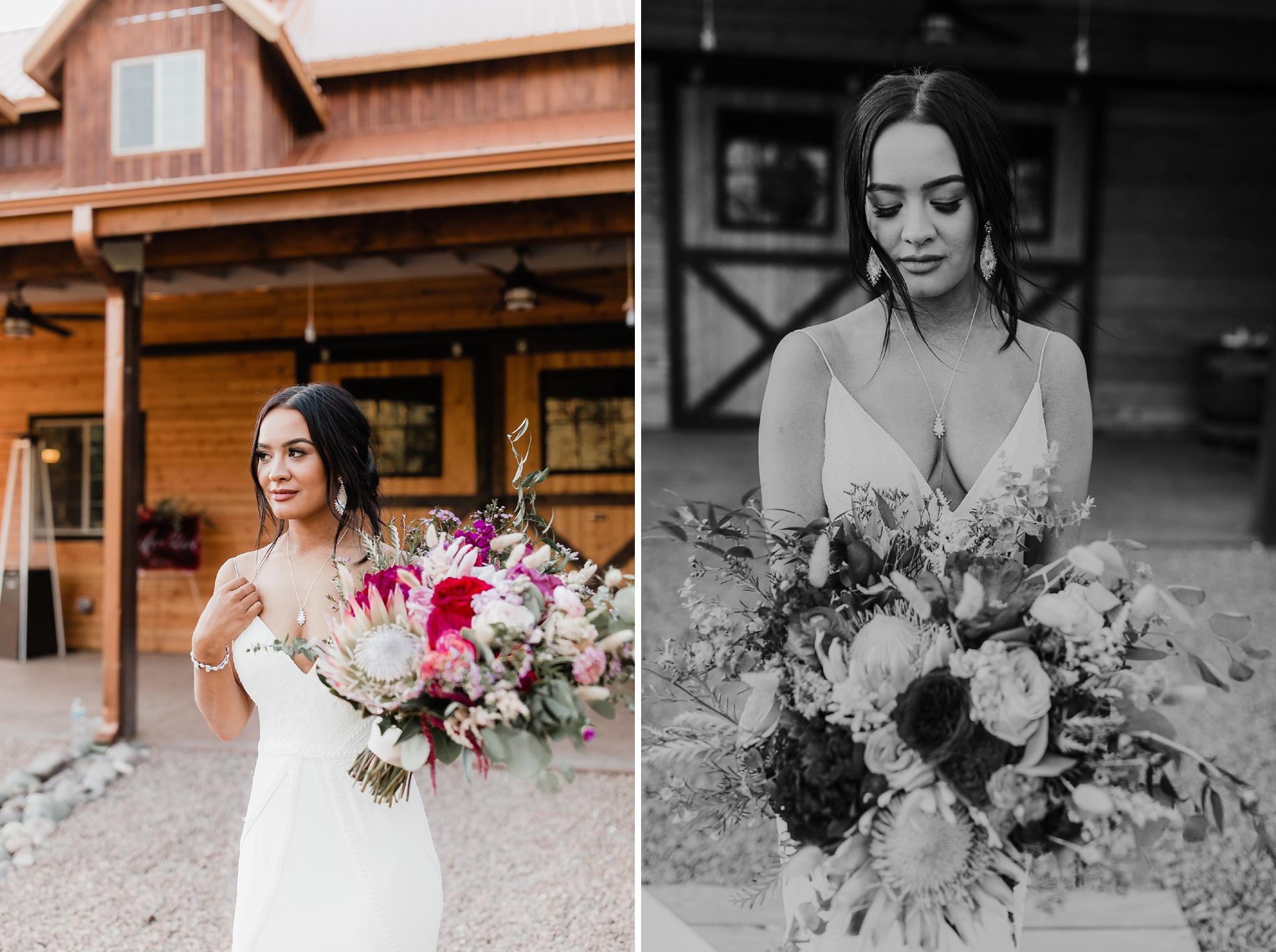 Alicia+lucia+photography+-+albuquerque+wedding+photographer+-+santa+fe+wedding+photography+-+new+mexico+wedding+photographer+-+new+mexico+wedding+-+new+mexico+wedding+-+barn+wedding+-+enchanted+vine+barn+wedding+-+ruidoso+wedding_0136.jpg