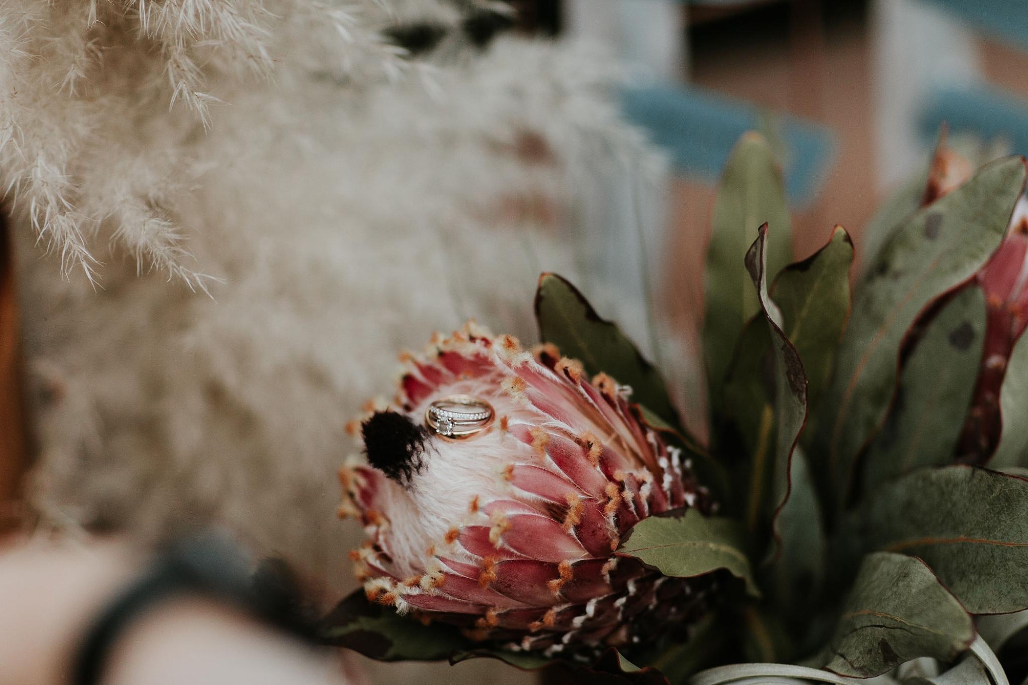 Alicia+lucia+photography+-+albuquerque+wedding+photographer+-+santa+fe+wedding+photography+-+new+mexico+wedding+photographer+-+new+mexico+wedding+-+new+mexico+wedding+-+wedding+florals+-+desert+wedding+-+wedding+trends_0038.jpg
