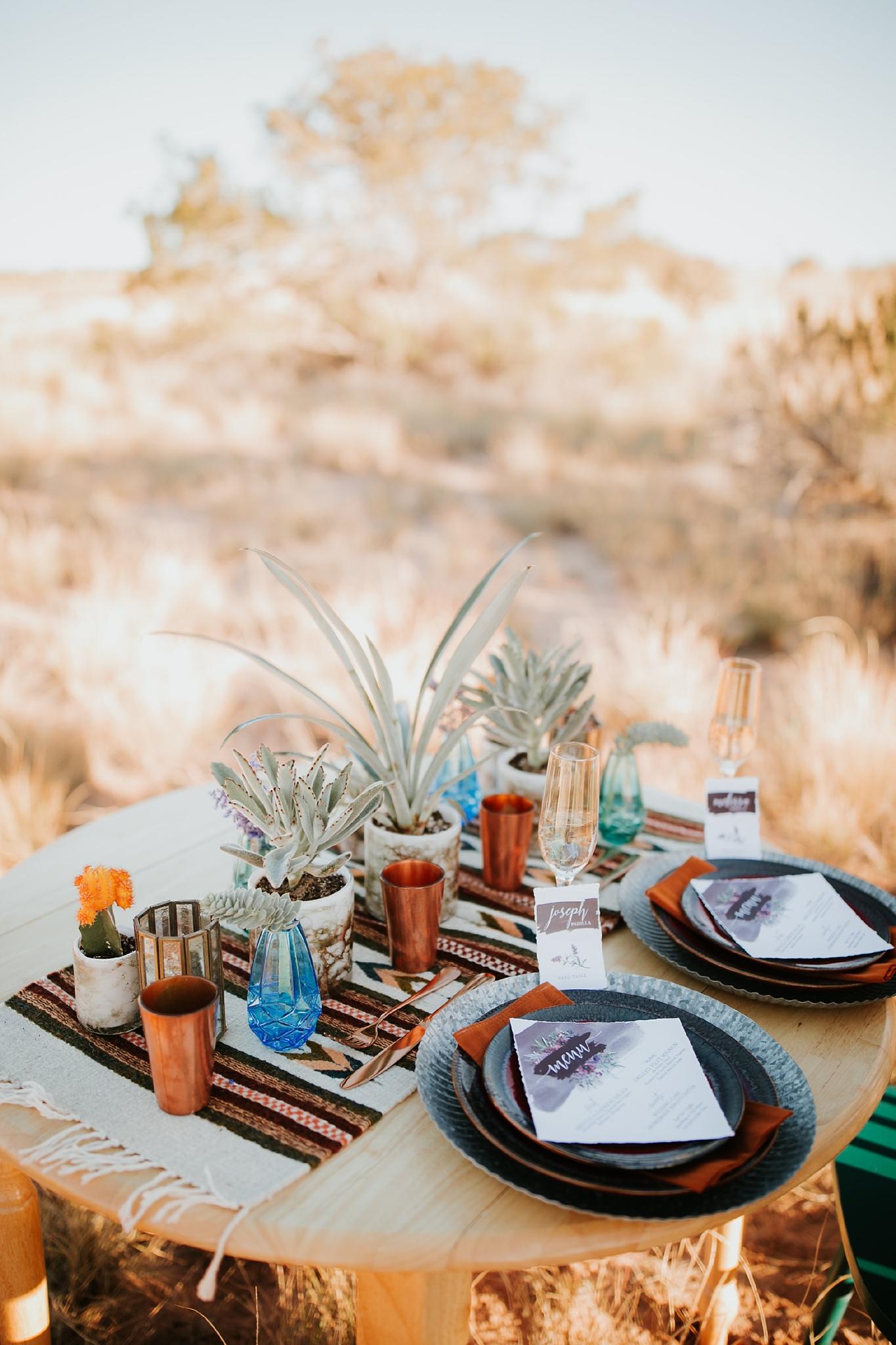 Alicia+lucia+photography+-+albuquerque+wedding+photographer+-+santa+fe+wedding+photography+-+new+mexico+wedding+photographer+-+new+mexico+wedding+-+new+mexico+wedding+-+wedding+florals+-+desert+wedding+-+wedding+trends_0049.jpg