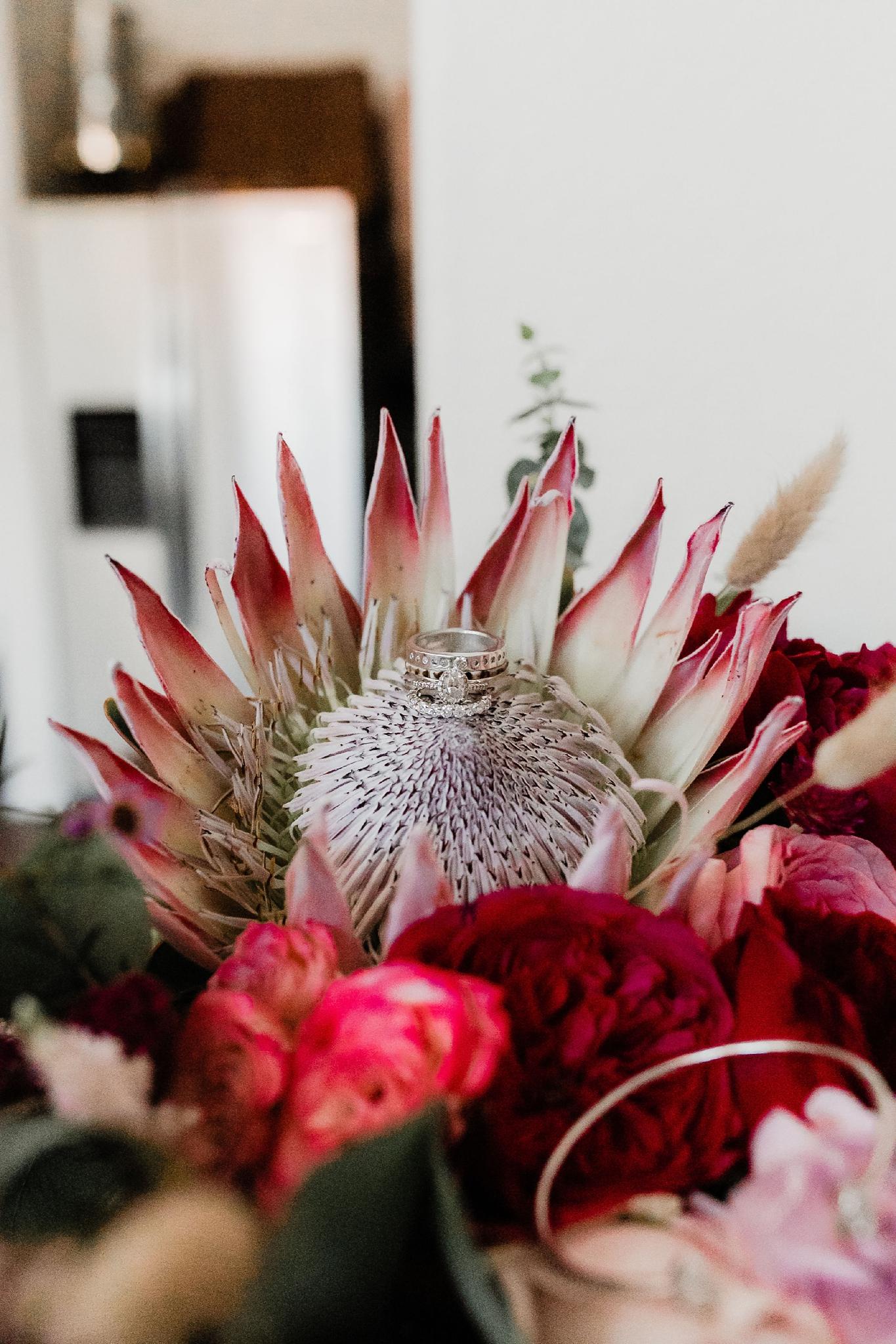 Alicia+lucia+photography+-+albuquerque+wedding+photographer+-+santa+fe+wedding+photography+-+new+mexico+wedding+photographer+-+new+mexico+wedding+-+new+mexico+wedding+-+wedding+florals+-+desert+wedding+-+wedding+trends_0075.jpg