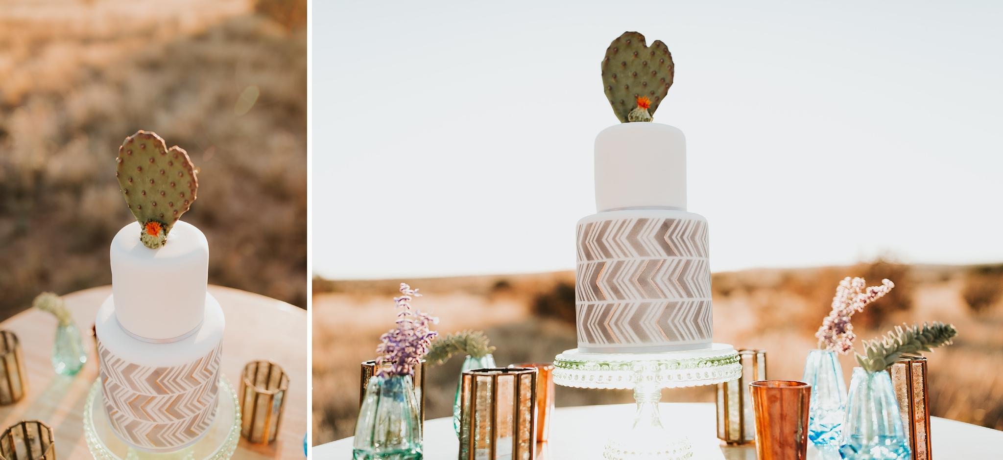 Alicia+lucia+photography+-+albuquerque+wedding+photographer+-+santa+fe+wedding+photography+-+new+mexico+wedding+photographer+-+new+mexico+wedding+-+new+mexico+wedding+-+wedding+florals+-+desert+wedding+-+wedding+trends_0080.jpg
