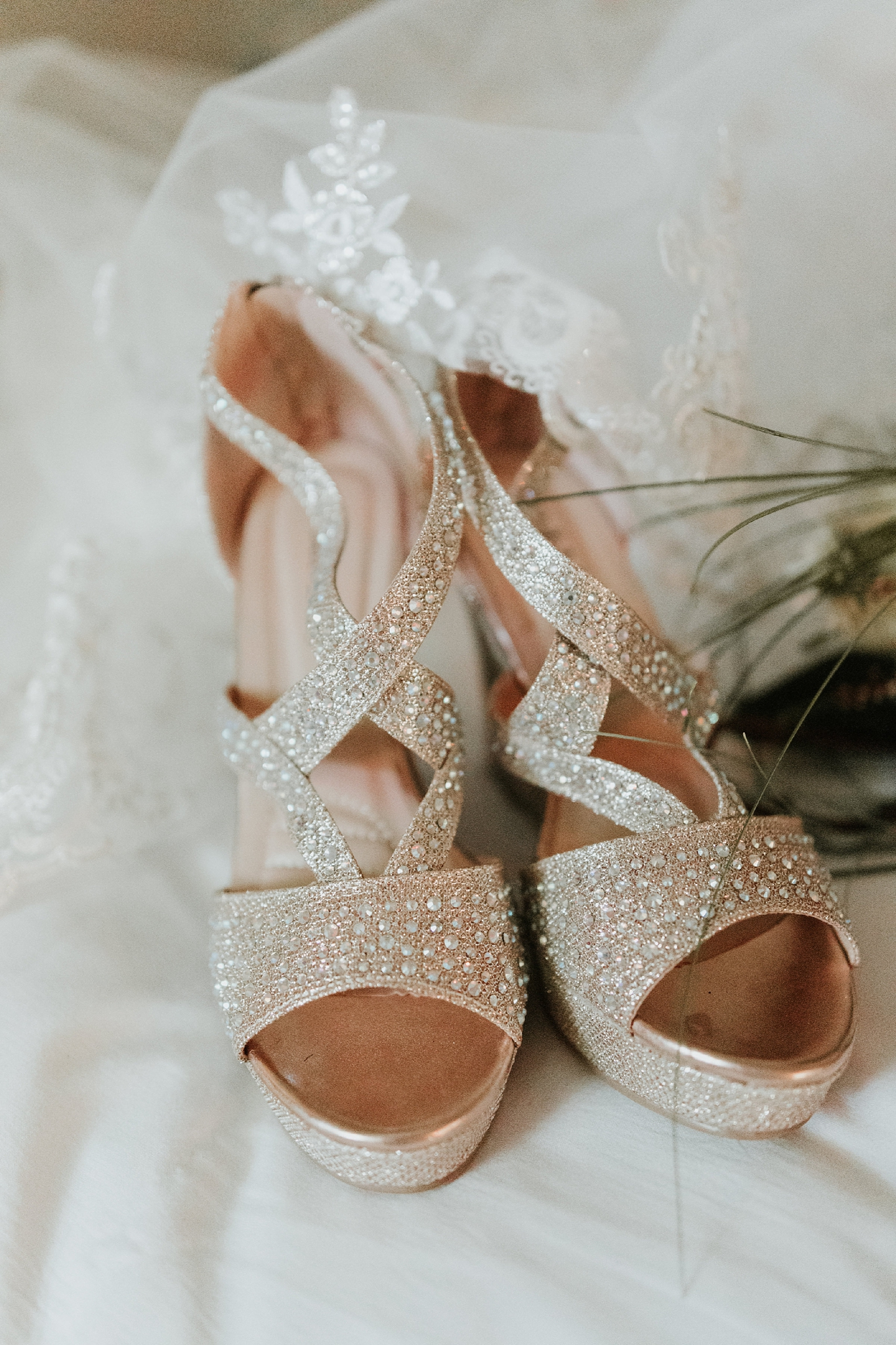 Alicia+lucia+photography+-+albuquerque+wedding+photographer+-+santa+fe+wedding+photography+-+new+mexico+wedding+photographer+-+new+mexico+wedding+-+new+mexico+wedding+-+colorado+wedding+-+bridal+shoes+-+bridal+inspo_0046.jpg
