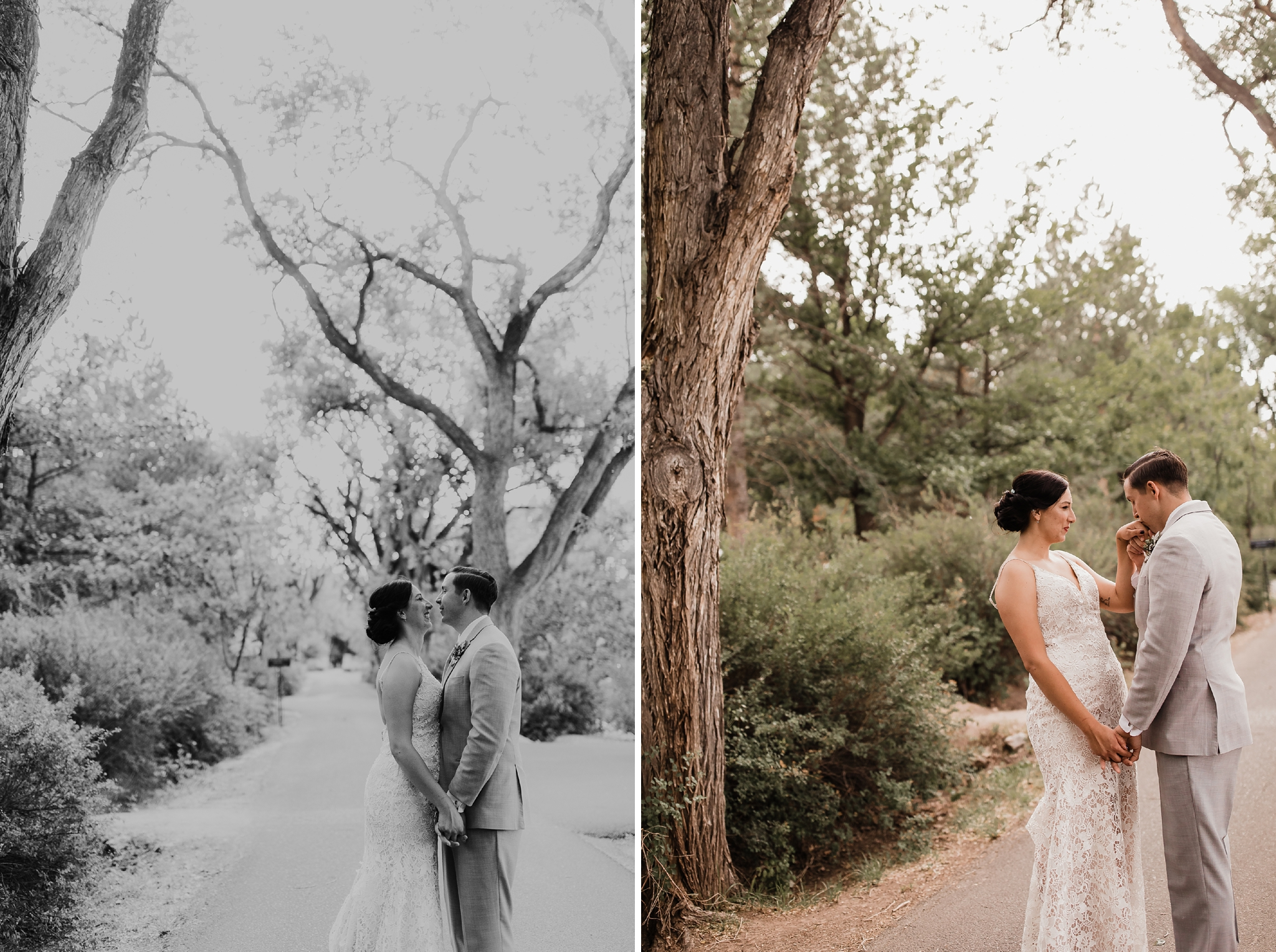 Alicia+lucia+photography+-+albuquerque+wedding+photographer+-+santa+fe+wedding+photography+-+new+mexico+wedding+photographer+-+new+mexico+wedding+-+new+mexico+wedding+-+summer+wedding+-+los+poblanos+wedding+-+colorado+bride_0096.jpg