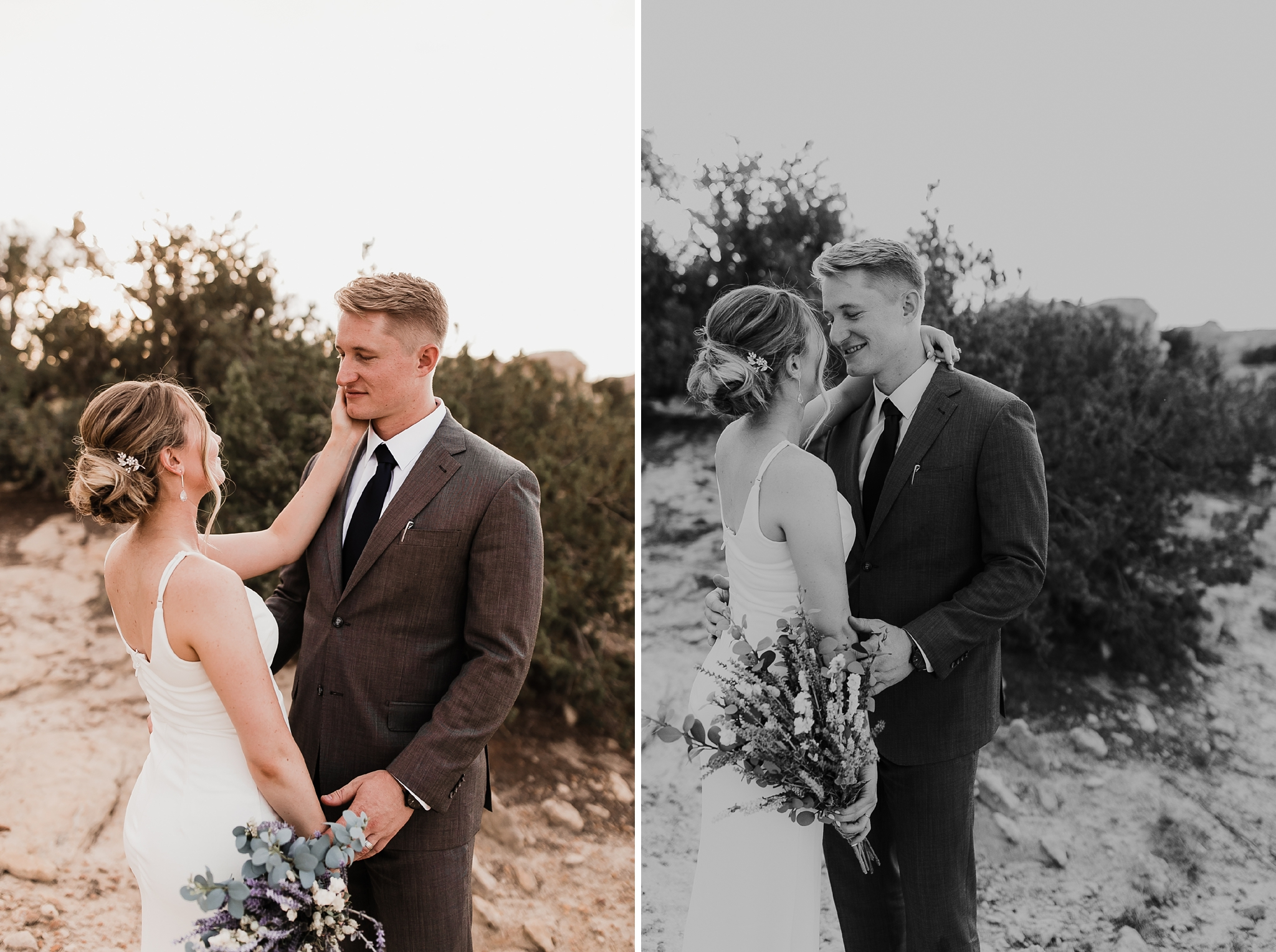 Alicia+lucia+photography+-+albuquerque+wedding+photographer+-+santa+fe+wedding+photography+-+new+mexico+wedding+photographer+-+new+mexico+wedding+-+new+mexico+elopement+-+elopment+-+mountain+elopement_0006.jpg