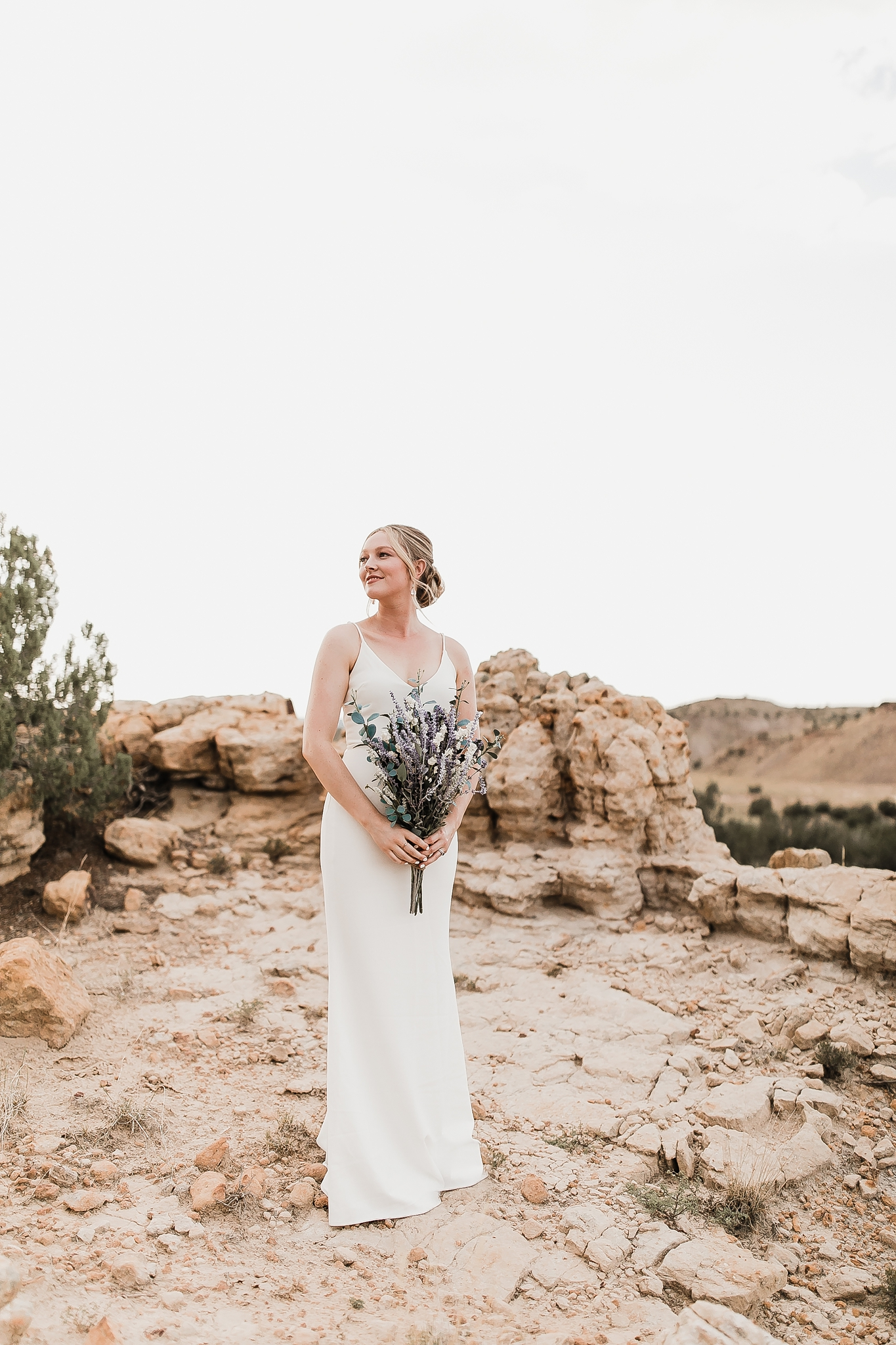 Alicia+lucia+photography+-+albuquerque+wedding+photographer+-+santa+fe+wedding+photography+-+new+mexico+wedding+photographer+-+new+mexico+wedding+-+new+mexico+elopement+-+elopment+-+mountain+elopement_0012.jpg