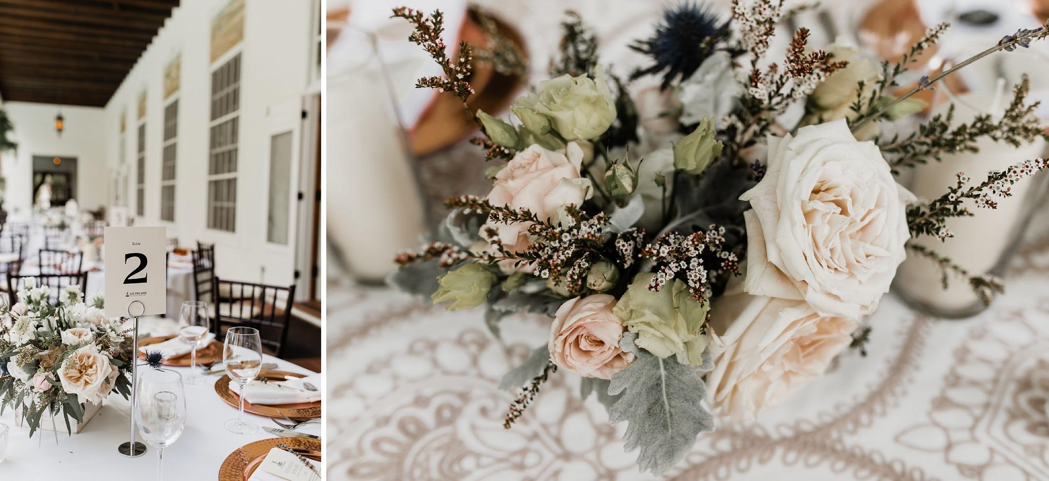 Alicia+lucia+photography+-+albuquerque+wedding+photographer+-+santa+fe+wedding+photography+-+new+mexico+wedding+photographer+-+new+mexico+wedding+-+summer+wedding+-+summer+wedding+florals+-+southwest+wedding_0064.jpg