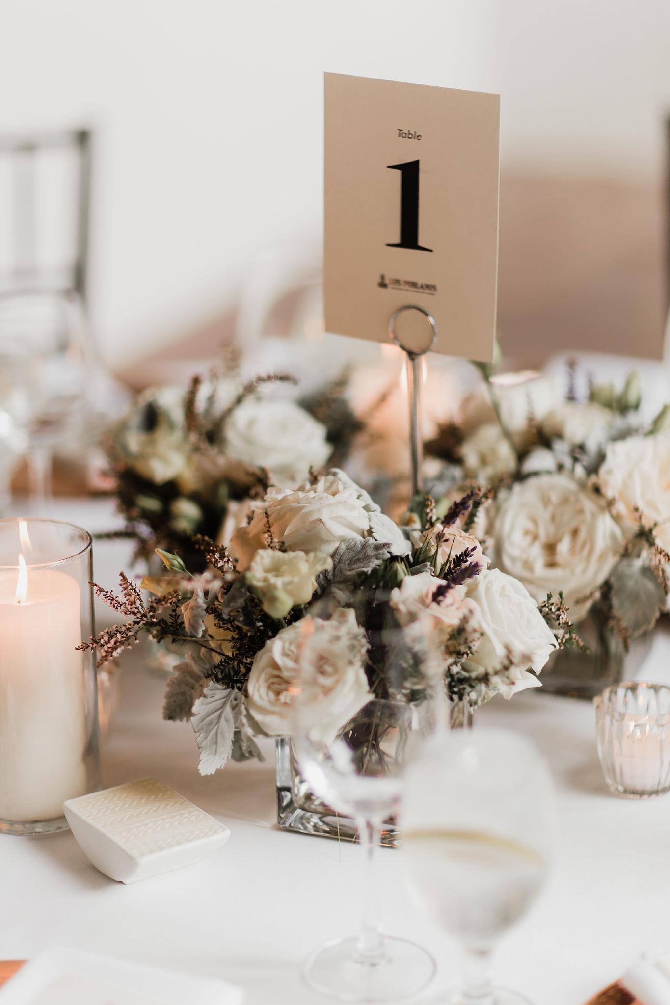 Alicia+lucia+photography+-+albuquerque+wedding+photographer+-+santa+fe+wedding+photography+-+new+mexico+wedding+photographer+-+new+mexico+wedding+-+summer+wedding+-+summer+wedding+florals+-+southwest+wedding_0065.jpg