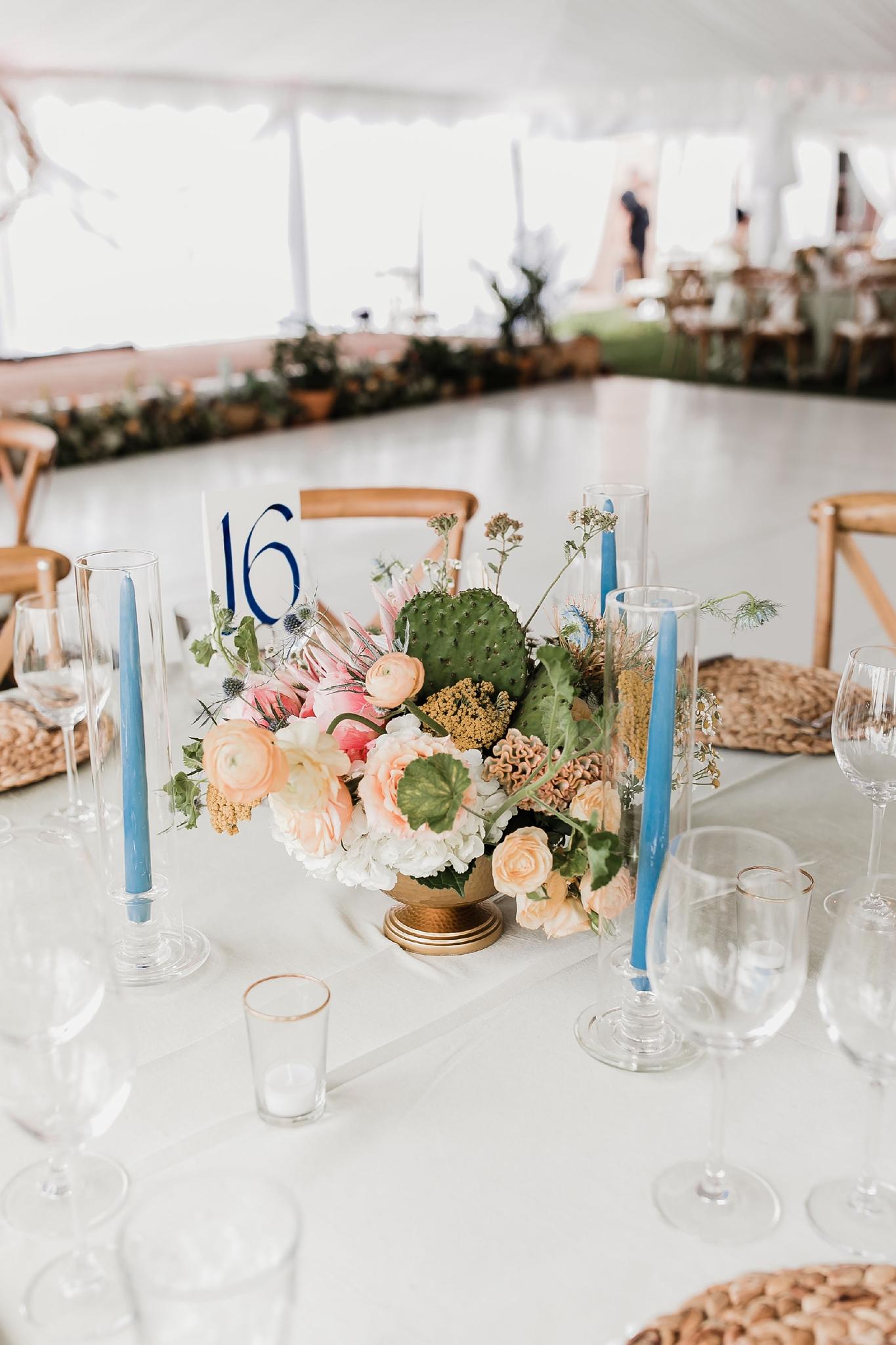Alicia+lucia+photography+-+albuquerque+wedding+photographer+-+santa+fe+wedding+photography+-+new+mexico+wedding+photographer+-+new+mexico+wedding+-+summer+wedding+-+summer+wedding+florals+-+southwest+wedding_0084.jpg