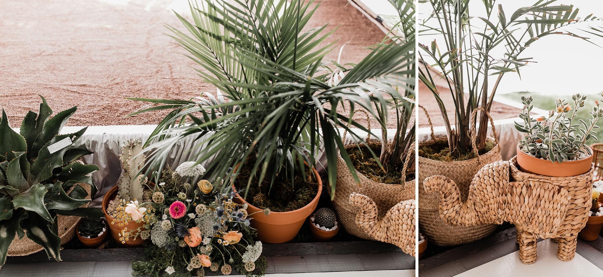 Alicia+lucia+photography+-+albuquerque+wedding+photographer+-+santa+fe+wedding+photography+-+new+mexico+wedding+photographer+-+new+mexico+wedding+-+summer+wedding+-+summer+wedding+florals+-+southwest+wedding_0083.jpg