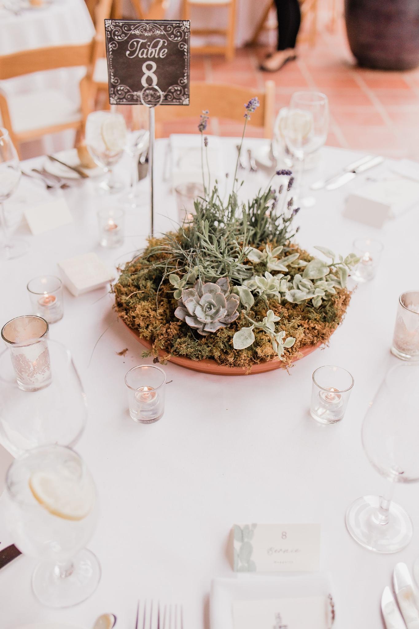 Alicia+lucia+photography+-+albuquerque+wedding+photographer+-+santa+fe+wedding+photography+-+new+mexico+wedding+photographer+-+new+mexico+wedding+-+summer+wedding+-+summer+wedding+florals+-+southwest+wedding_0102.jpg