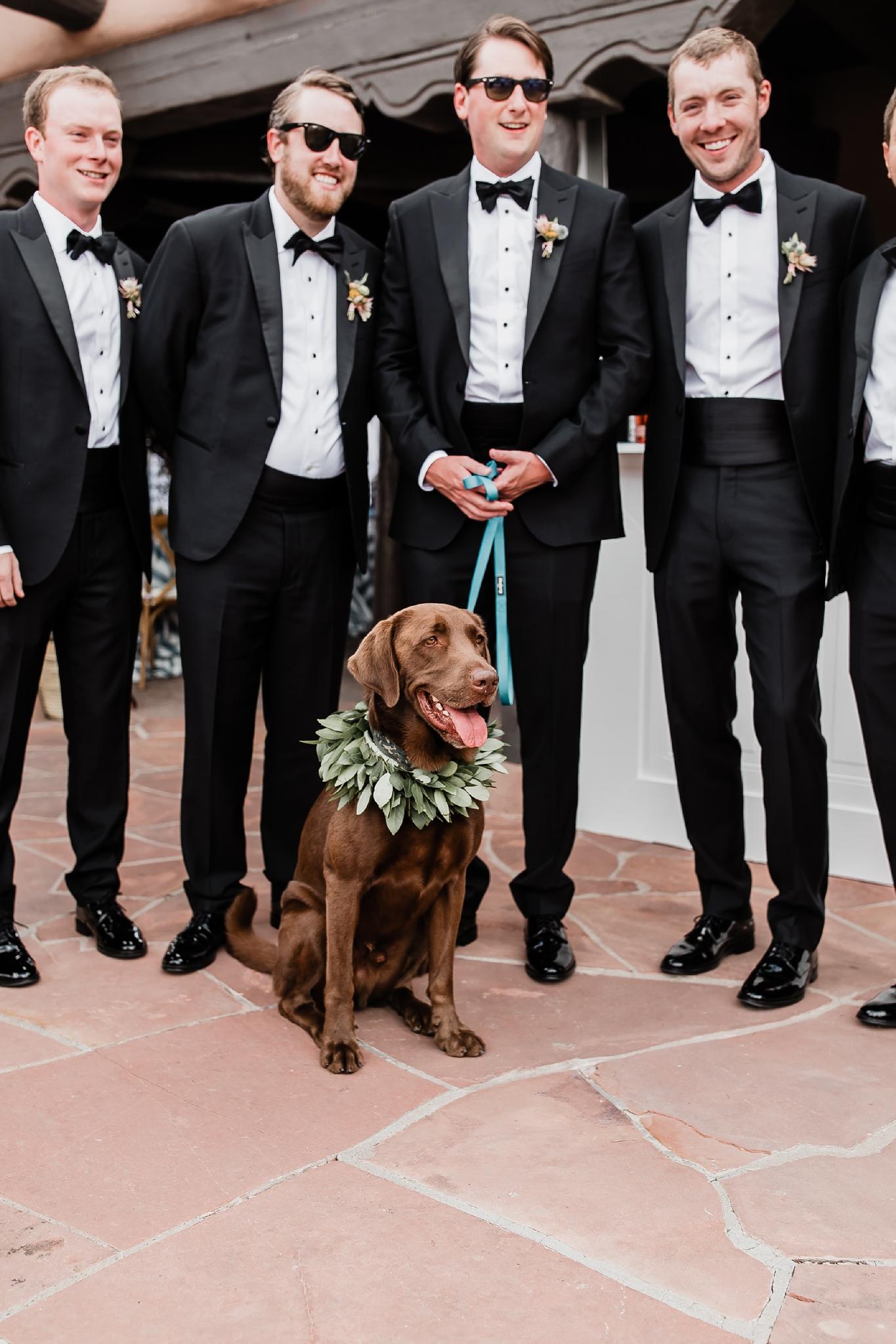 Alicia+lucia+photography+-+albuquerque+wedding+photographer+-+santa+fe+wedding+photography+-+new+mexico+wedding+photographer+-+new+mexico+wedding+-+las+campanas+wedding+-+santa+fe+wedding+-+maximalist+wedding+-+destination+wedding_0042.jpg