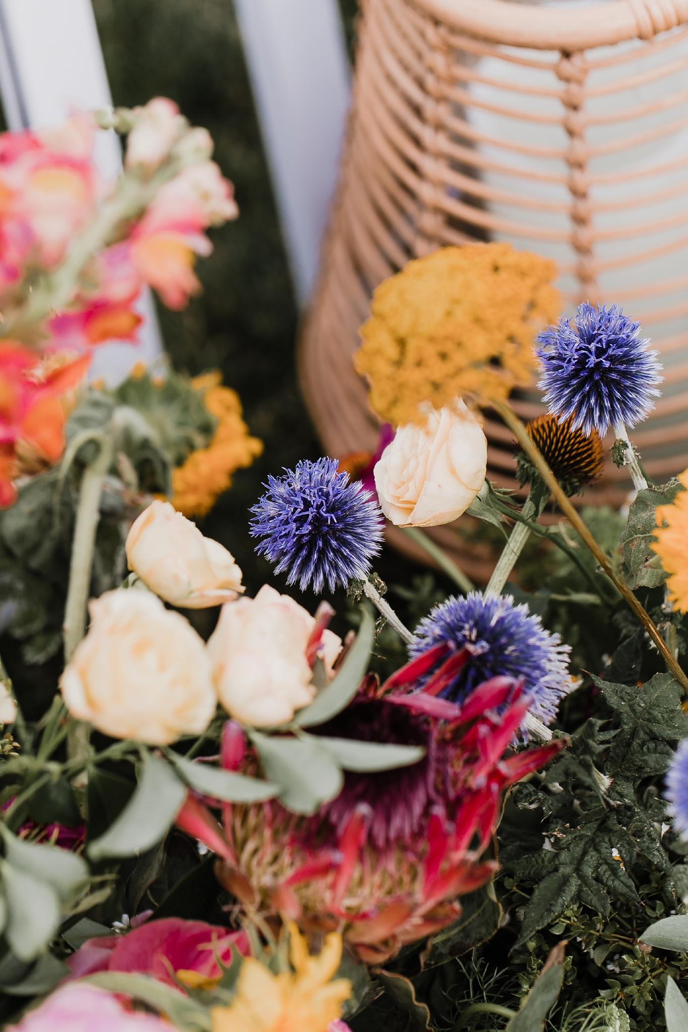 Alicia+lucia+photography+-+albuquerque+wedding+photographer+-+santa+fe+wedding+photography+-+new+mexico+wedding+photographer+-+new+mexico+wedding+-+las+campanas+wedding+-+santa+fe+wedding+-+maximalist+wedding+-+destination+wedding_0048.jpg