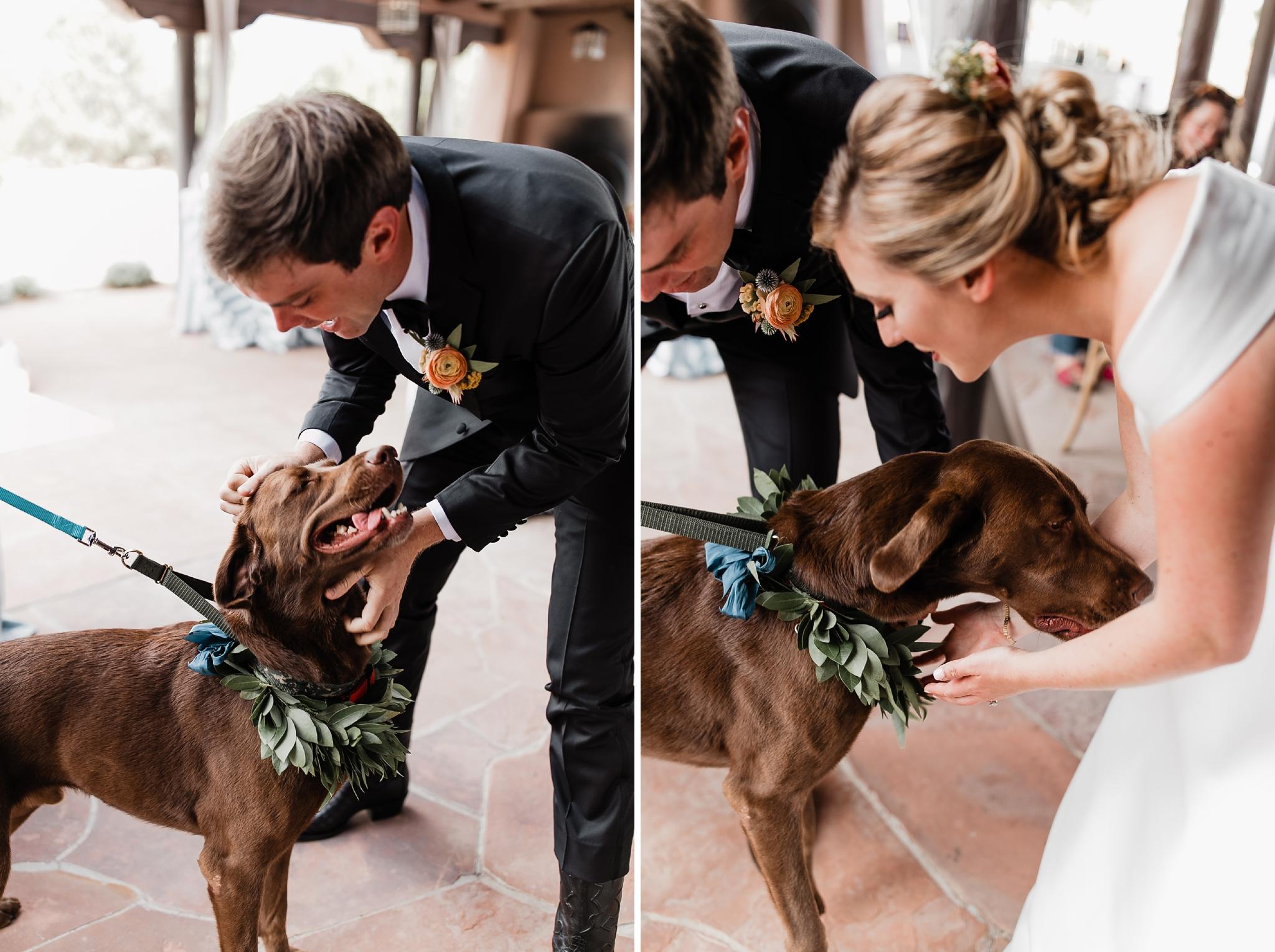 Alicia+lucia+photography+-+albuquerque+wedding+photographer+-+santa+fe+wedding+photography+-+new+mexico+wedding+photographer+-+new+mexico+wedding+-+las+campanas+wedding+-+santa+fe+wedding+-+maximalist+wedding+-+destination+wedding_0051.jpg
