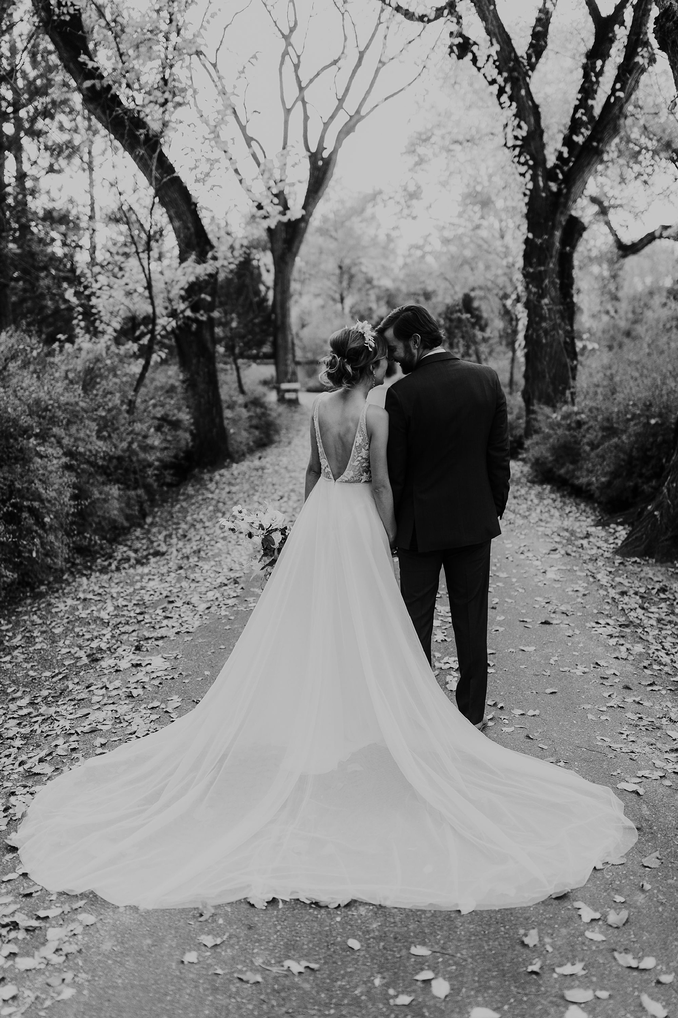 Alicia+lucia+photography+-+albuquerque+wedding+photographer+-+santa+fe+wedding+photography+-+new+mexico+wedding+photographer+-+new+mexico+wedding+-+wedding+gowns+-+bridal+gowns+-+a+line+wedding+gown_0006.jpg