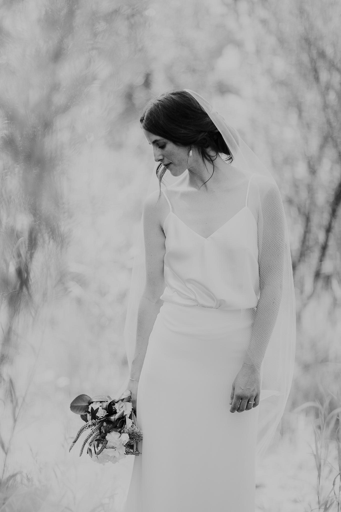 Alicia+lucia+photography+-+albuquerque+wedding+photographer+-+santa+fe+wedding+photography+-+new+mexico+wedding+photographer+-+new+mexico+wedding+-+old+town+wedding+-+casa+de+suenos+wedding+-+hotel+albuquerque+wedding_0060.jpg