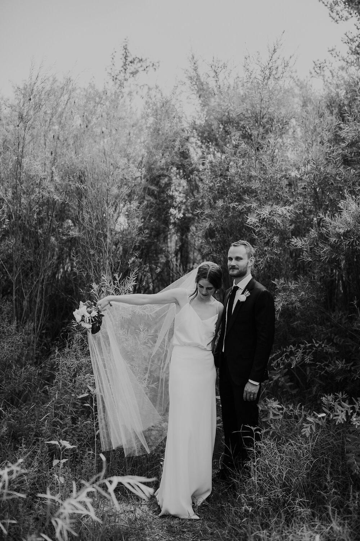 Alicia+lucia+photography+-+albuquerque+wedding+photographer+-+santa+fe+wedding+photography+-+new+mexico+wedding+photographer+-+new+mexico+wedding+-+old+town+wedding+-+casa+de+suenos+wedding+-+hotel+albuquerque+wedding_0074.jpg