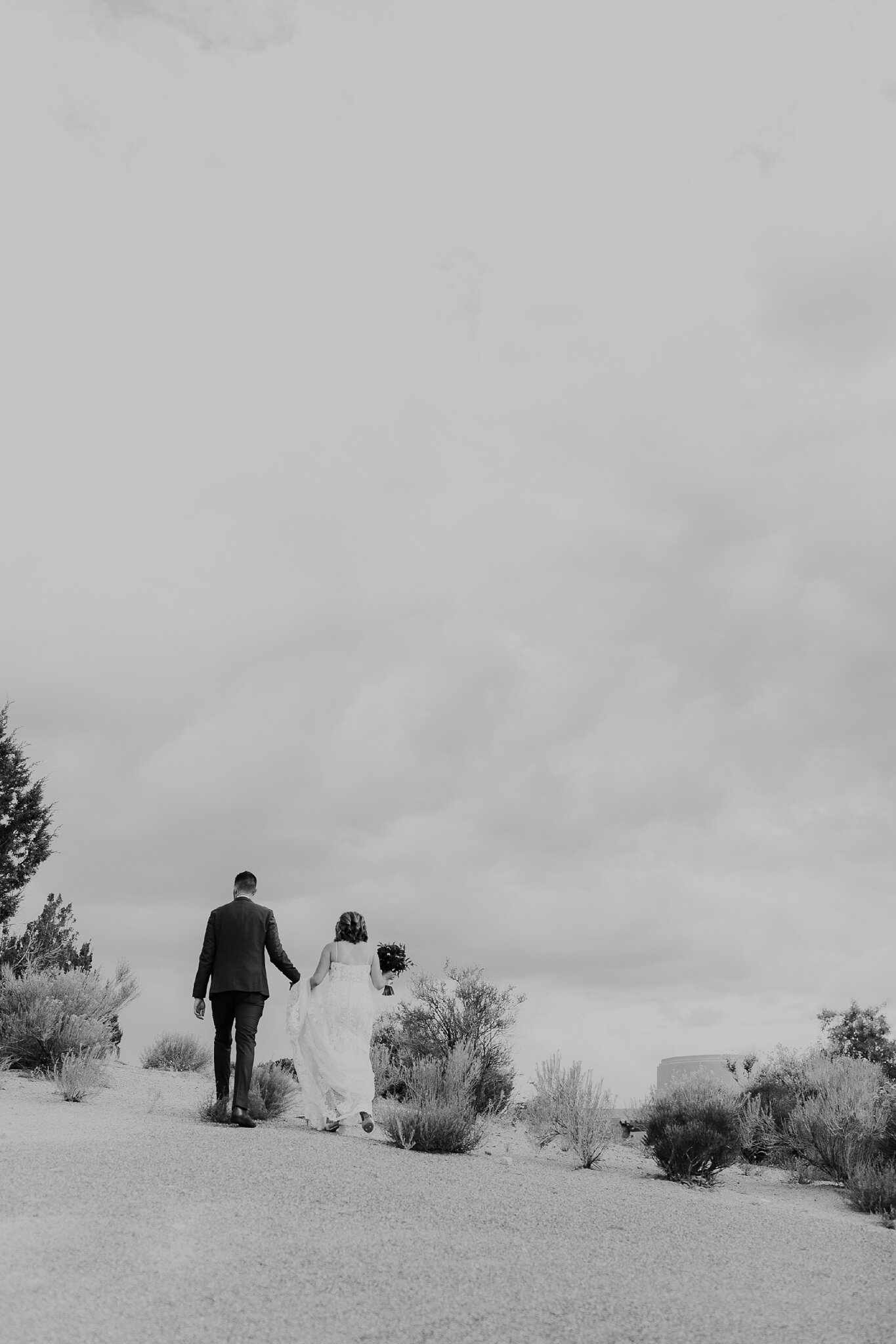 Alicia+lucia+photography+-+albuquerque+wedding+photographer+-+santa+fe+wedding+photography+-+new+mexico+wedding+photographer+-+new+mexico+wedding+-+albuquerque+wedding+-+sandia+wedding+-+sandia+event+center+wedding_0071.jpg