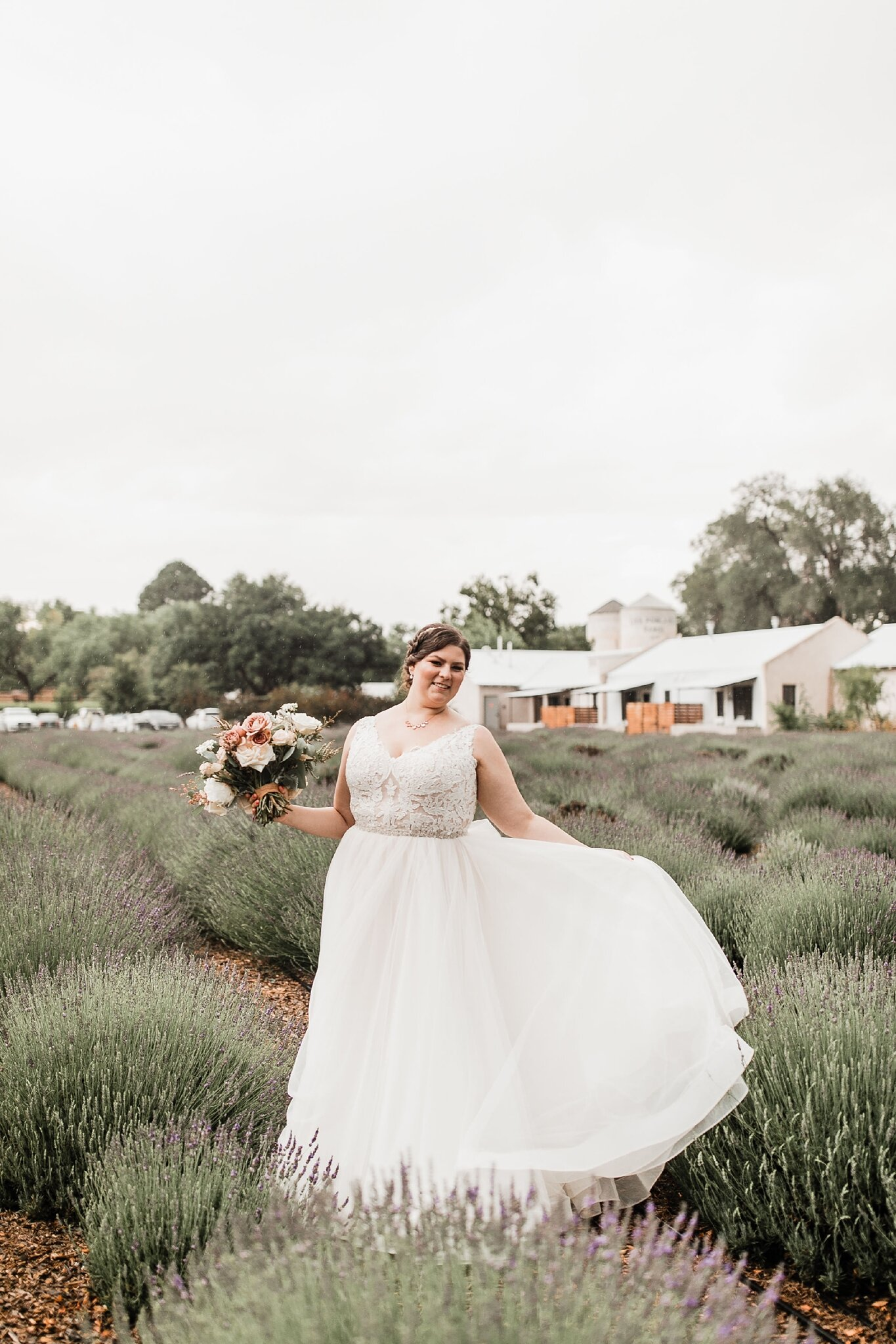 Alicia+lucia+photography+-+albuquerque+wedding+photographer+-+santa+fe+wedding+photography+-+new+mexico+wedding+photographer+-+new+mexico+wedding+-+wedding+-+bridal+gown+-+wedding+gown+-+ballgown+wedding+gown+-+ballgown+bridal+gown_0041.jpg
