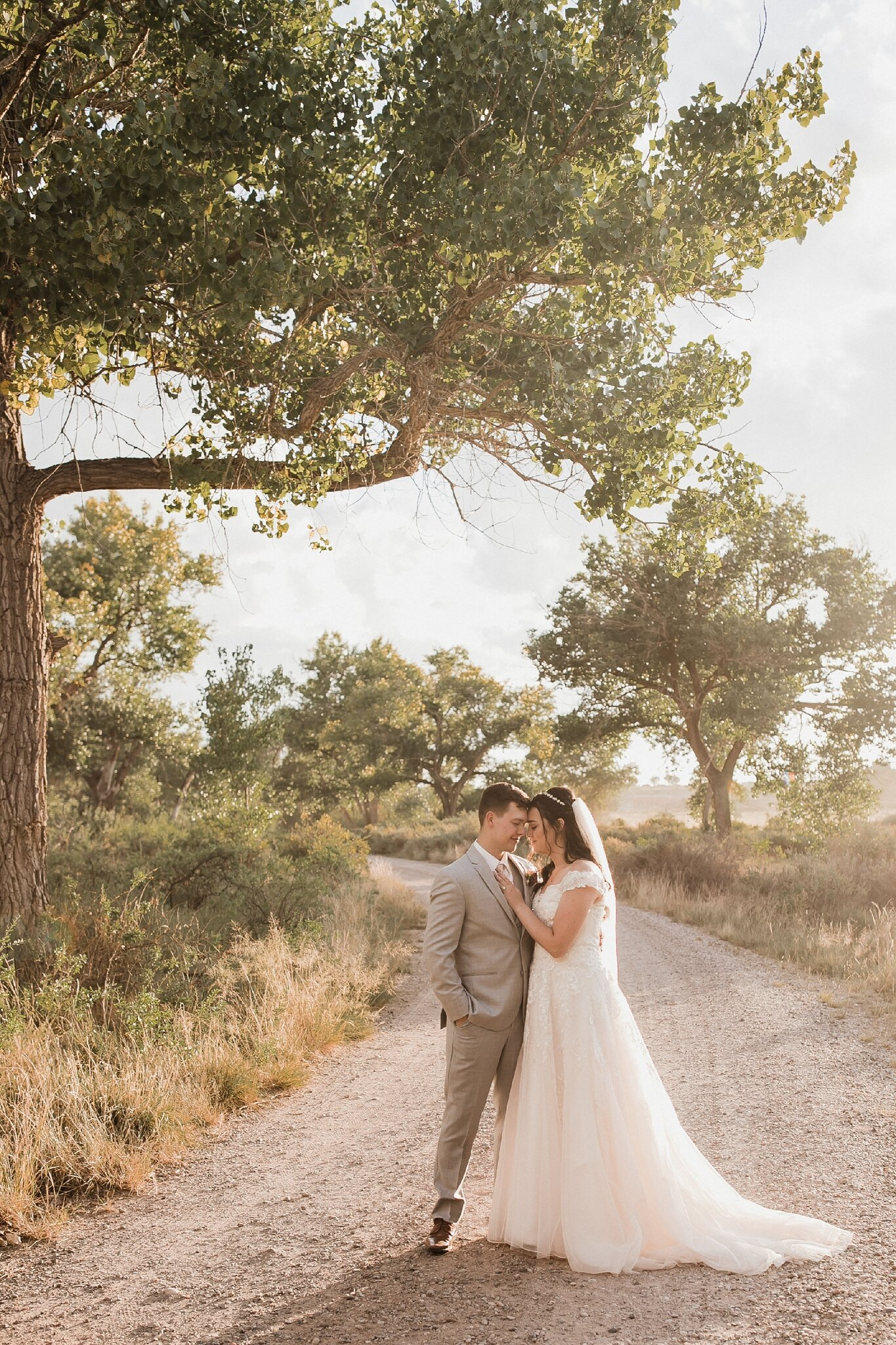 Alicia+lucia+photography+-+albuquerque+wedding+photographer+-+santa+fe+wedding+photography+-+new+mexico+wedding+photographer+-+new+mexico+wedding+-+wedding+-+bridal+gown+-+wedding+gown+-+ballgown+wedding+gown+-+ballgown+bridal+gown_0055.jpg