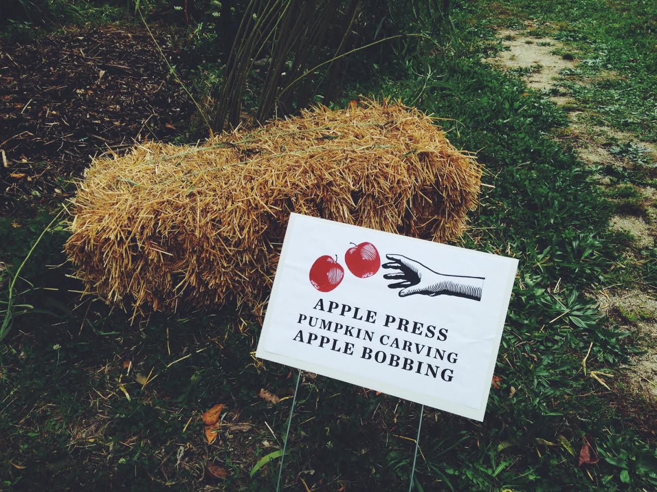 Signs guide guests to activities around the orchard...