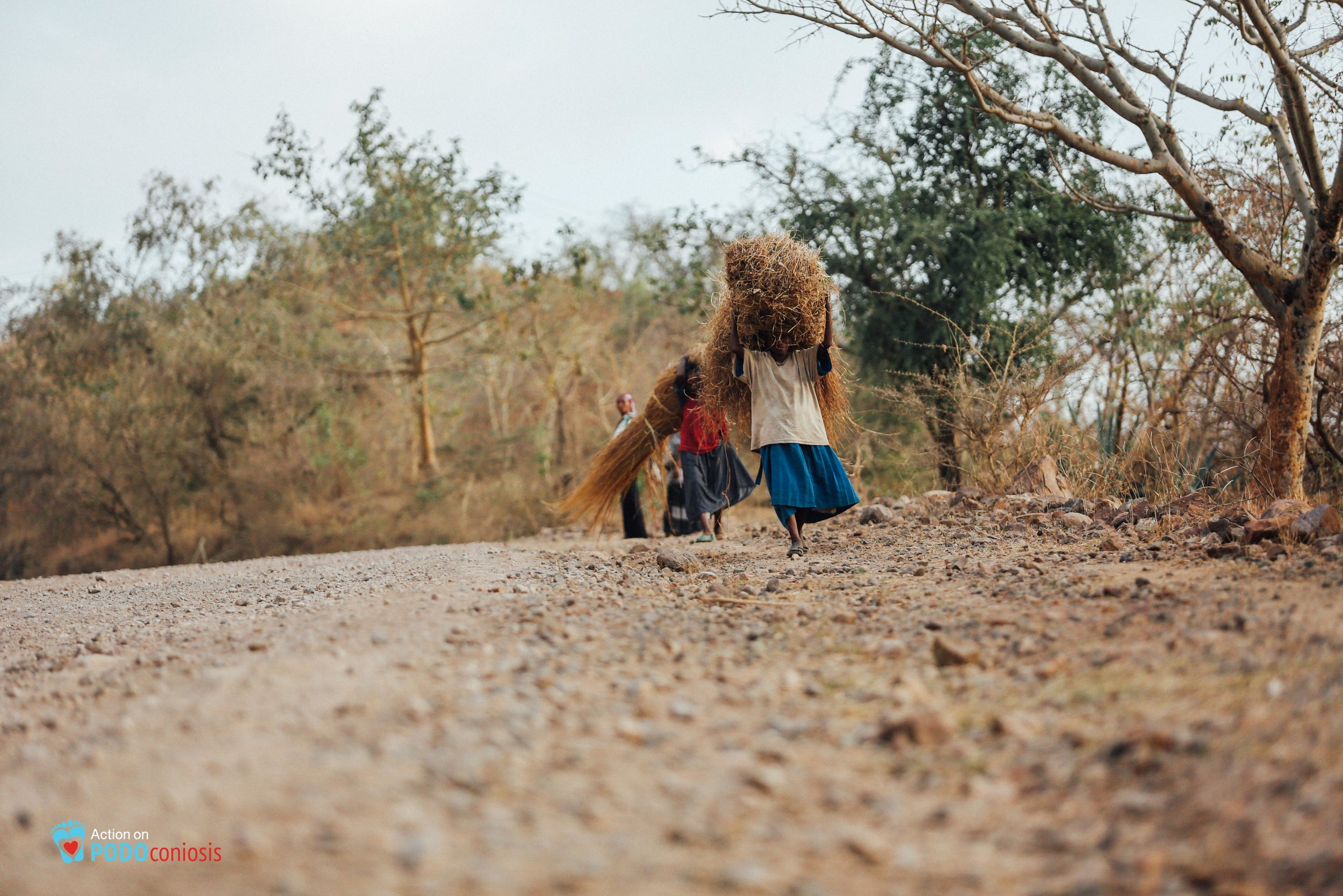 Two elderly women struggle up hill daily on dirt roads, covering long distances to collect grass.