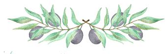 olive header.png