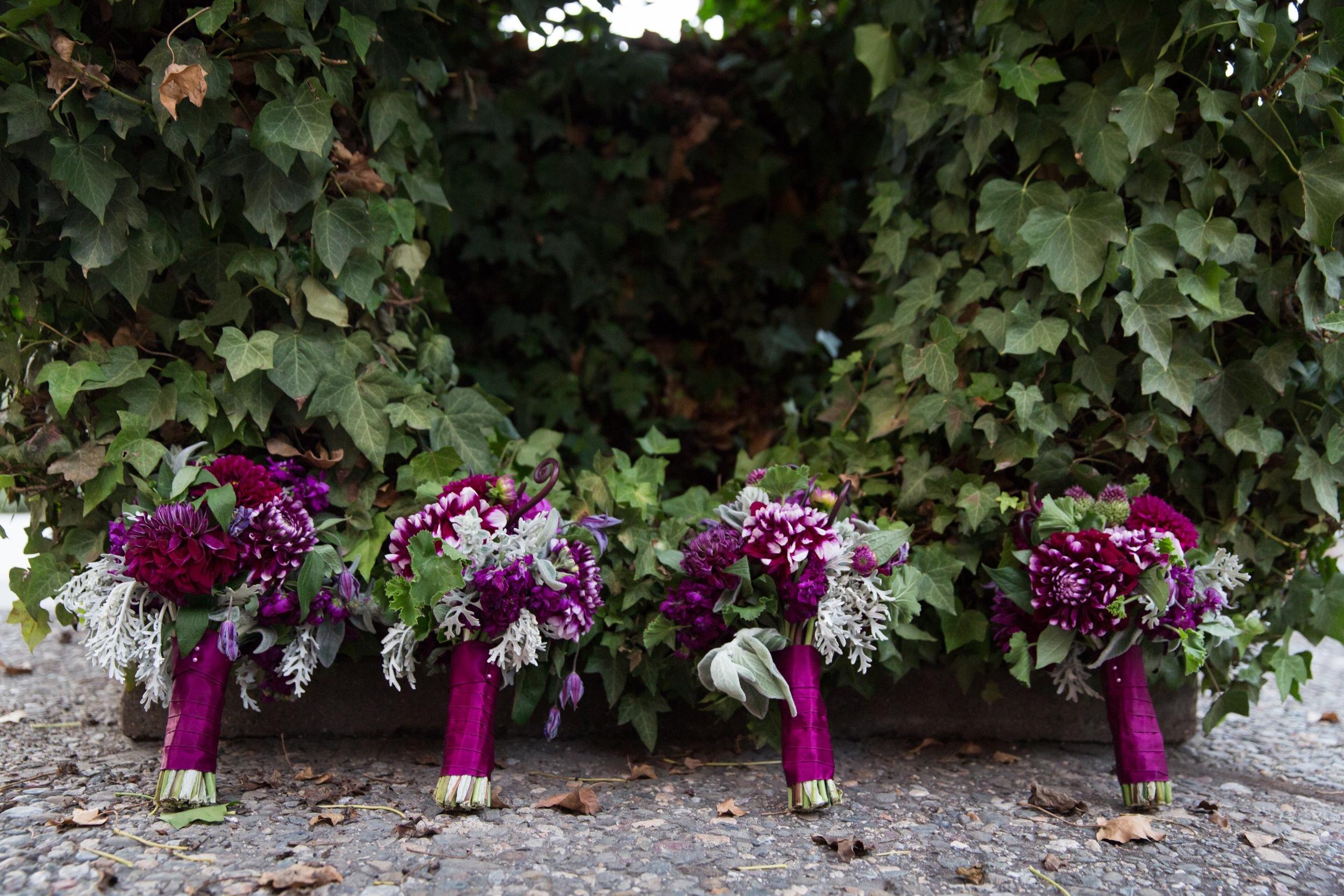 juniperspringphotography-catalex-flowers-28.jpg
