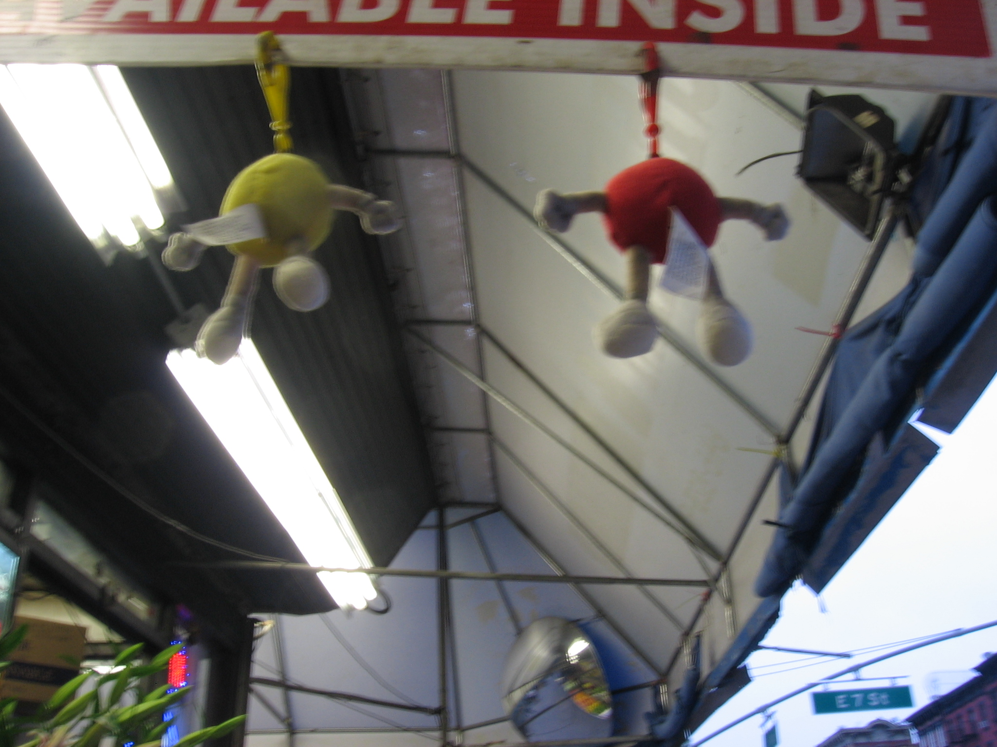 hanging creatures.JPG