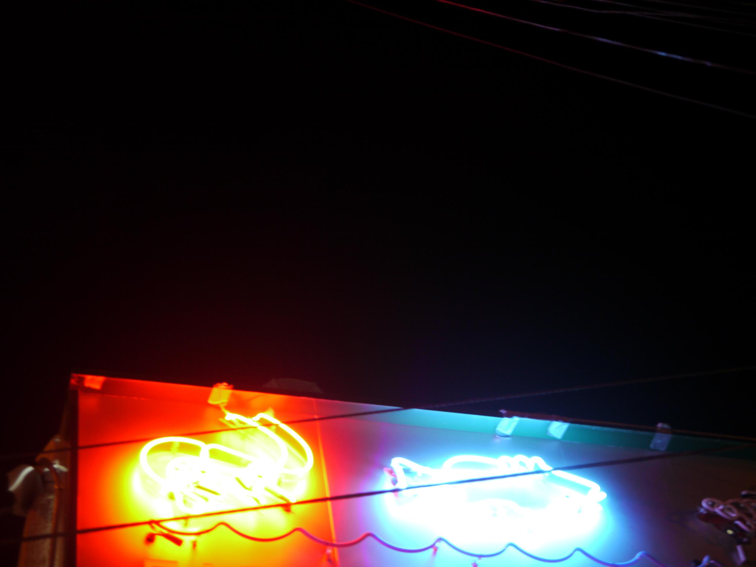 neon animals sign 1 blurry.JPG
