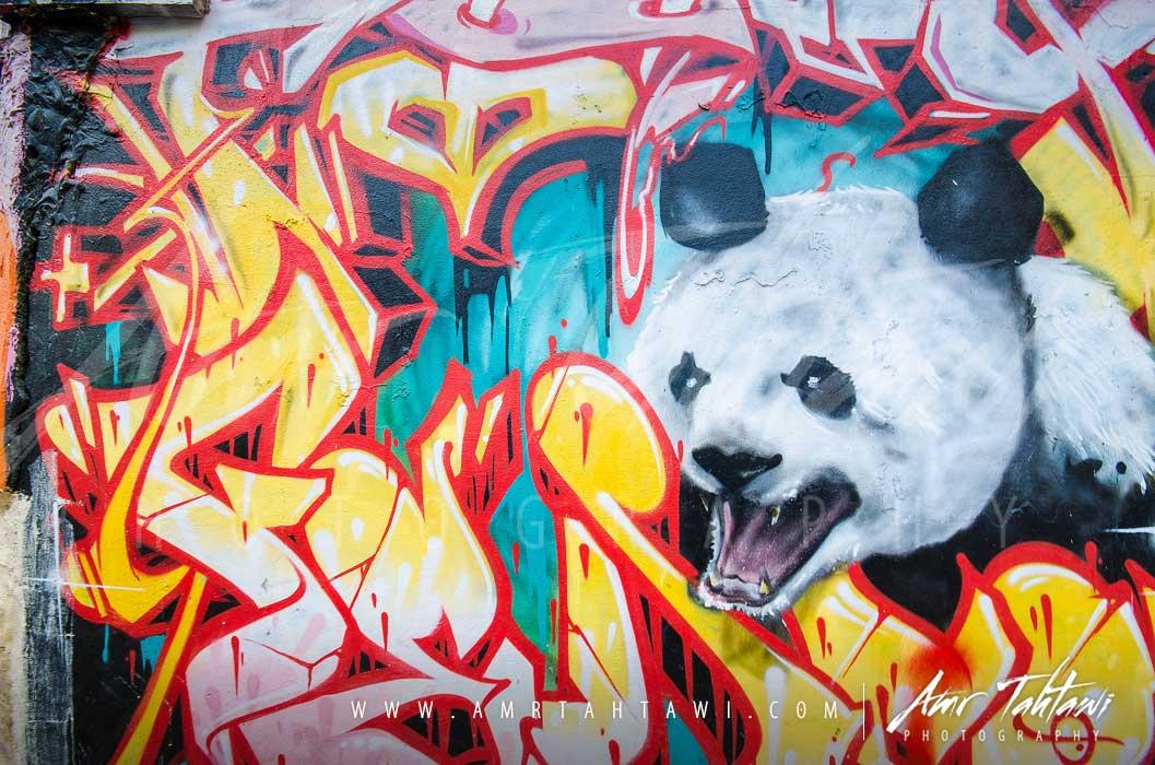 Panda fun ( click for a full screen experience )