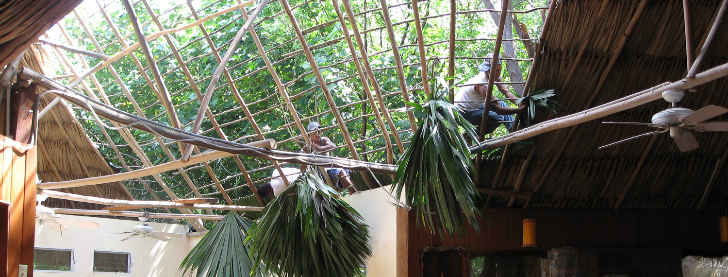 Adding thatch to the roof of the Main Palapa