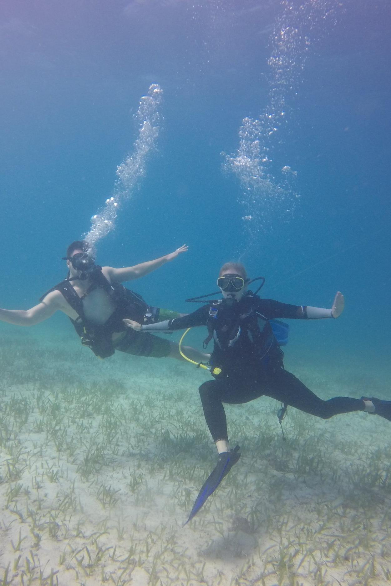 Snorkeling & Diving -