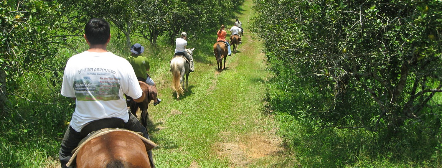Horseback Riding Tour in Belize
