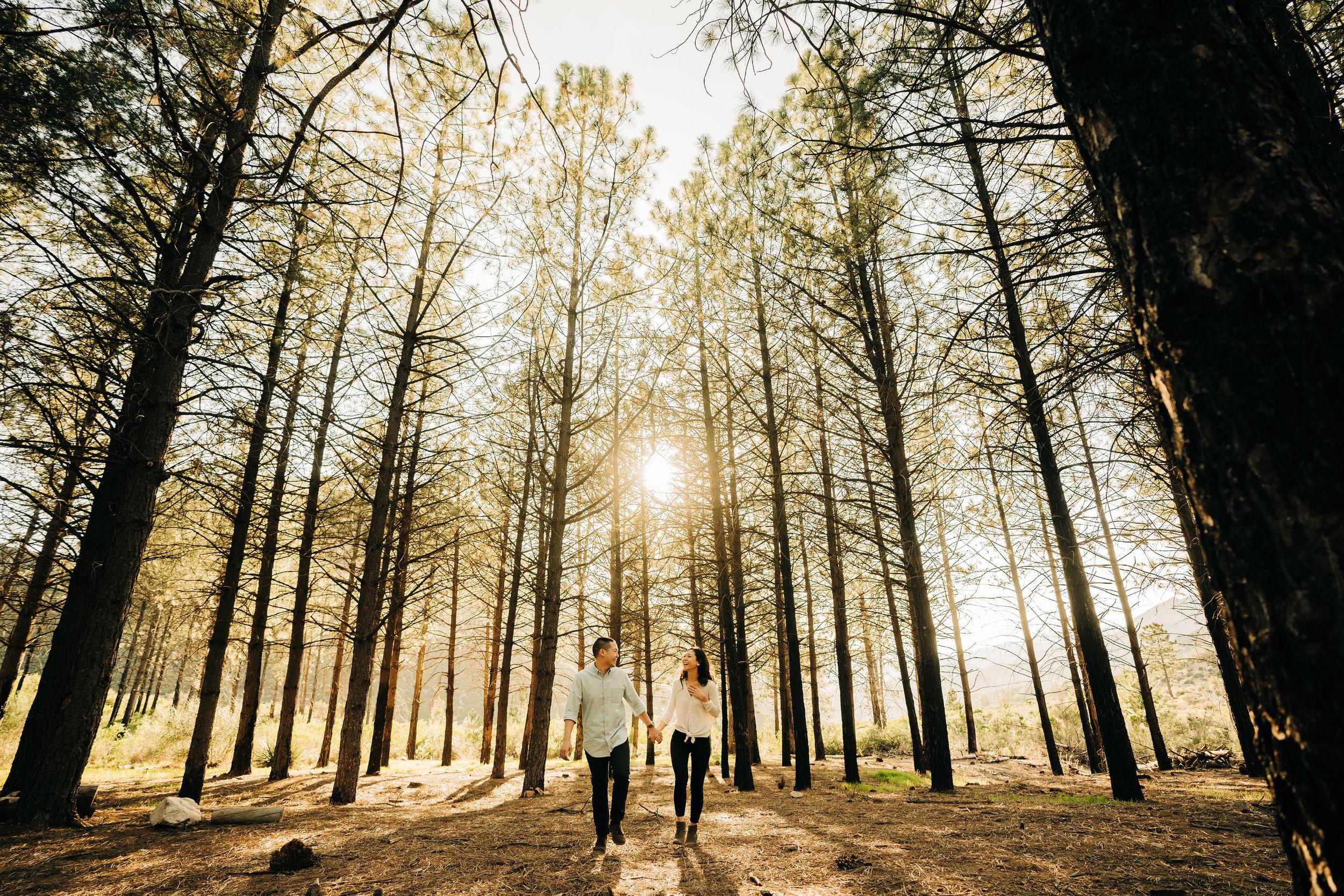la-forest-engagement-photos-047.jpg