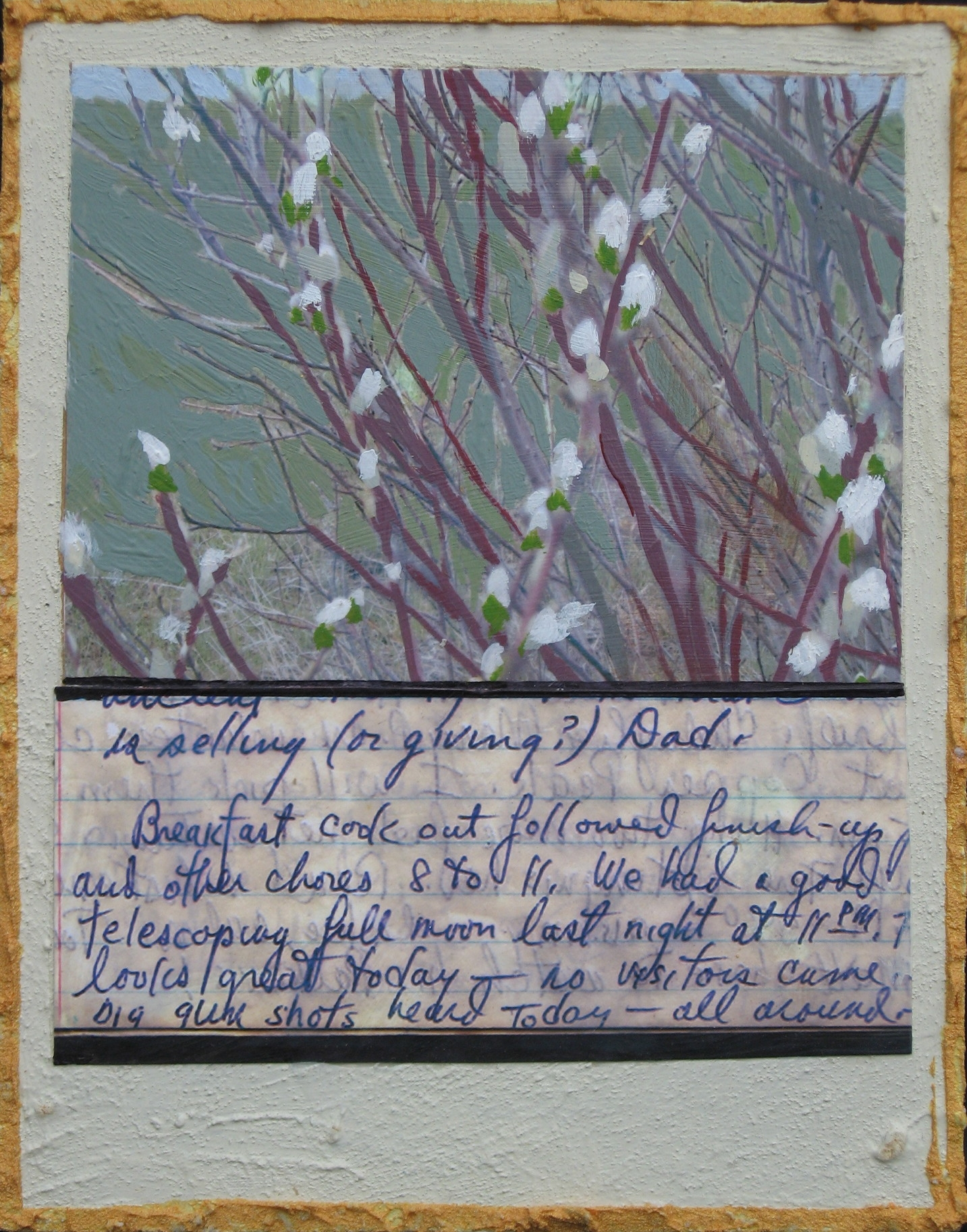 SPRING:JOURNAL PAGE