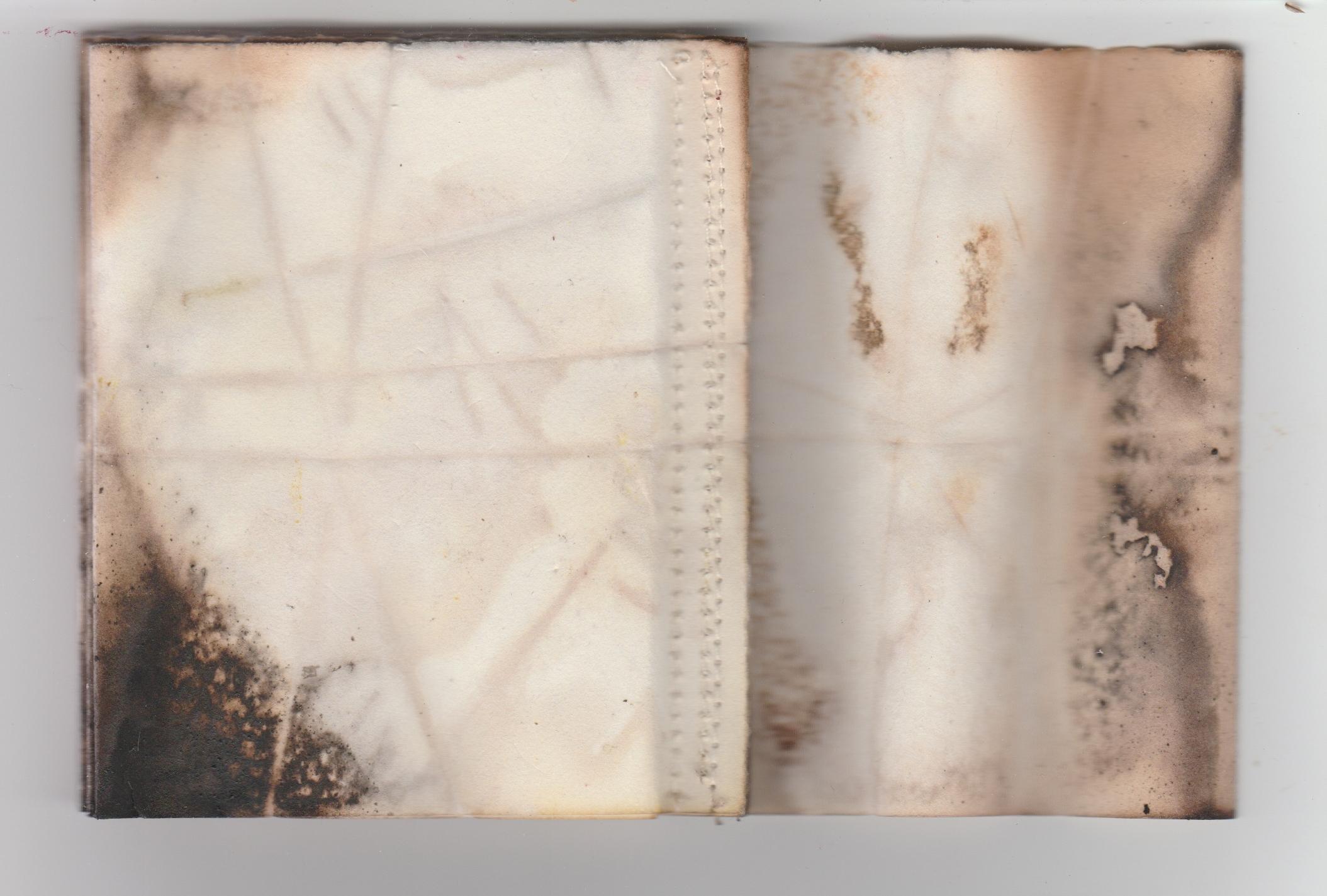 SMALL BOOK COVER SPREAD.jpeg