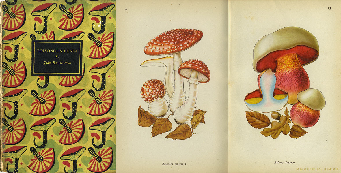 Poisonous Fungi , written by John Ramsbottom, illustrated by Rose Ellenby. 1945.