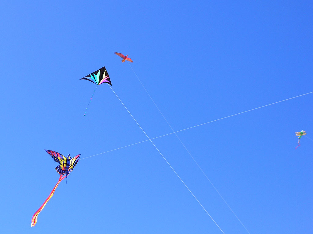 kite04.jpg