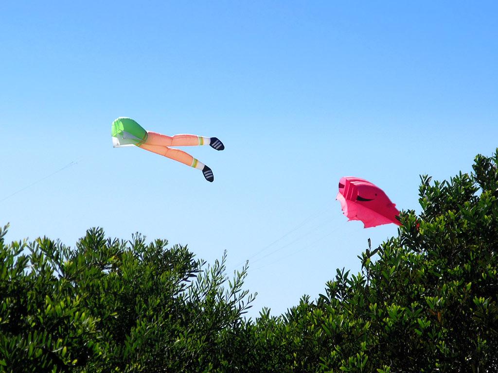 kite06.jpg