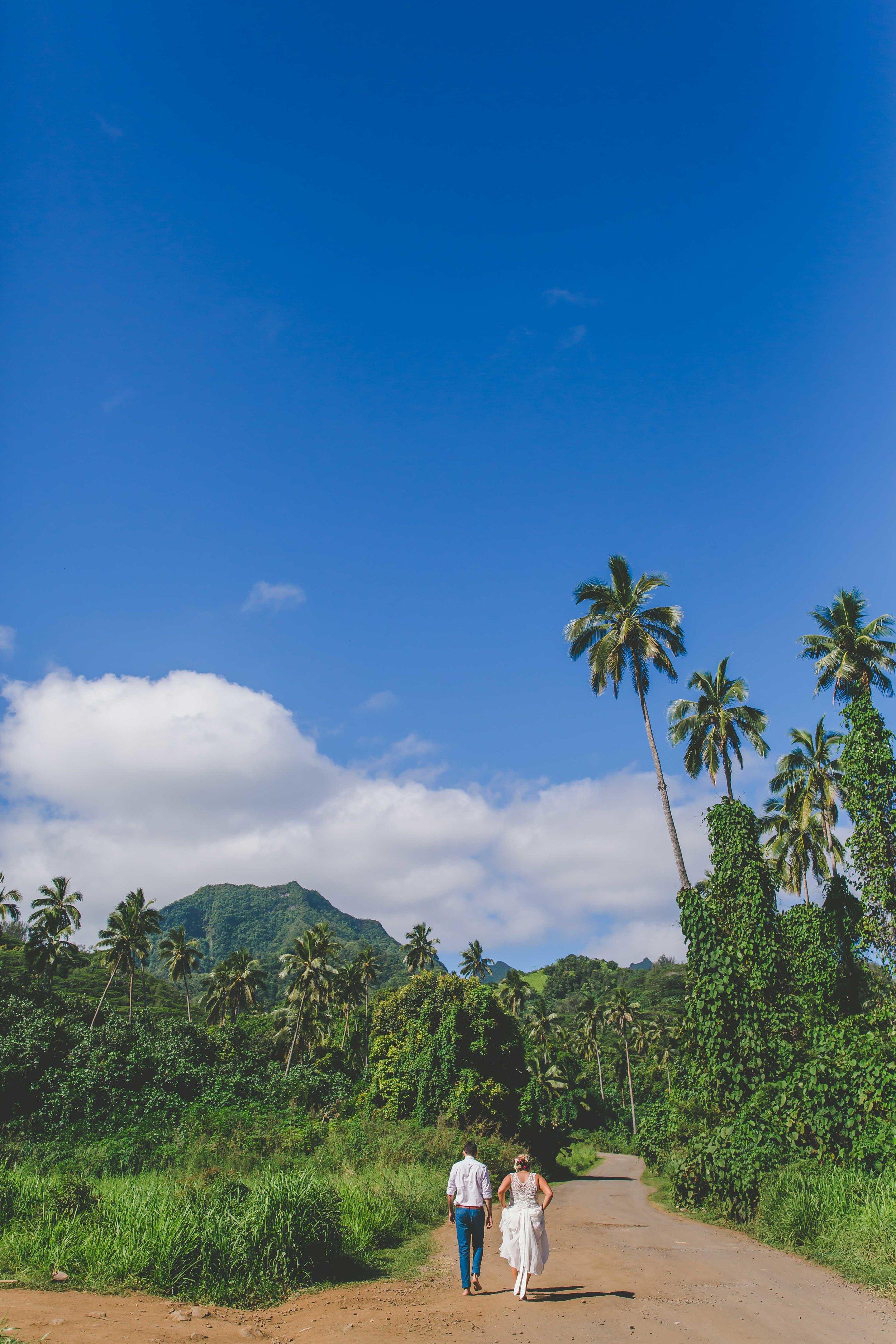 Rarotonga jungle