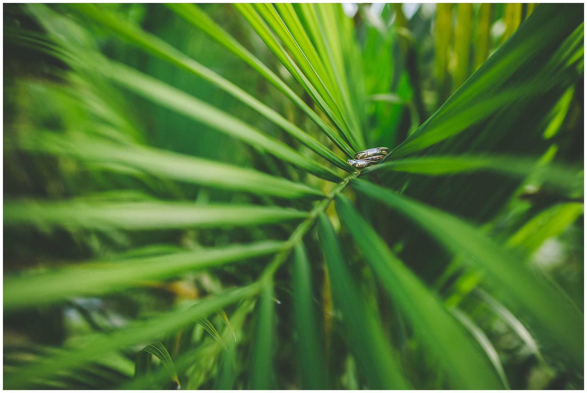 tropical wedding rarotonga