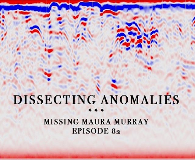 Dissecting Anomalies is our newest episode. We talk to Ed Sewell and Graham Henderson of GB Geotechnics (@gbgusa) about their findings from the recent ground penetrating radar searches performed on properties of interest in New Hampshire. (This image is the anomaly found under Rick's old lawn, as described in episode 82). #podcast #truecrime #mauramurray https://itunes.apple.com/us/podcast/missing-maura-murray/id1006974447