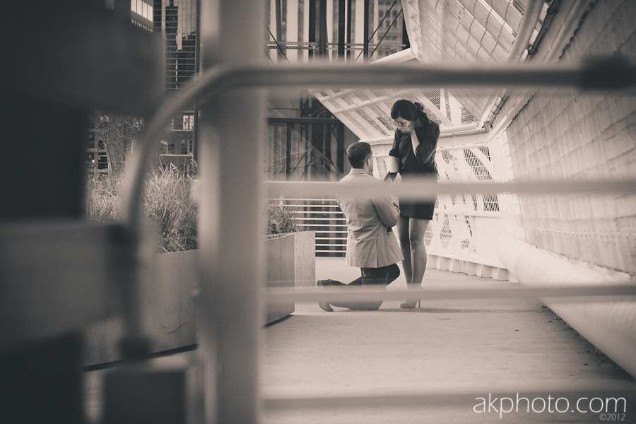 denver-proposal-photographer.jpg