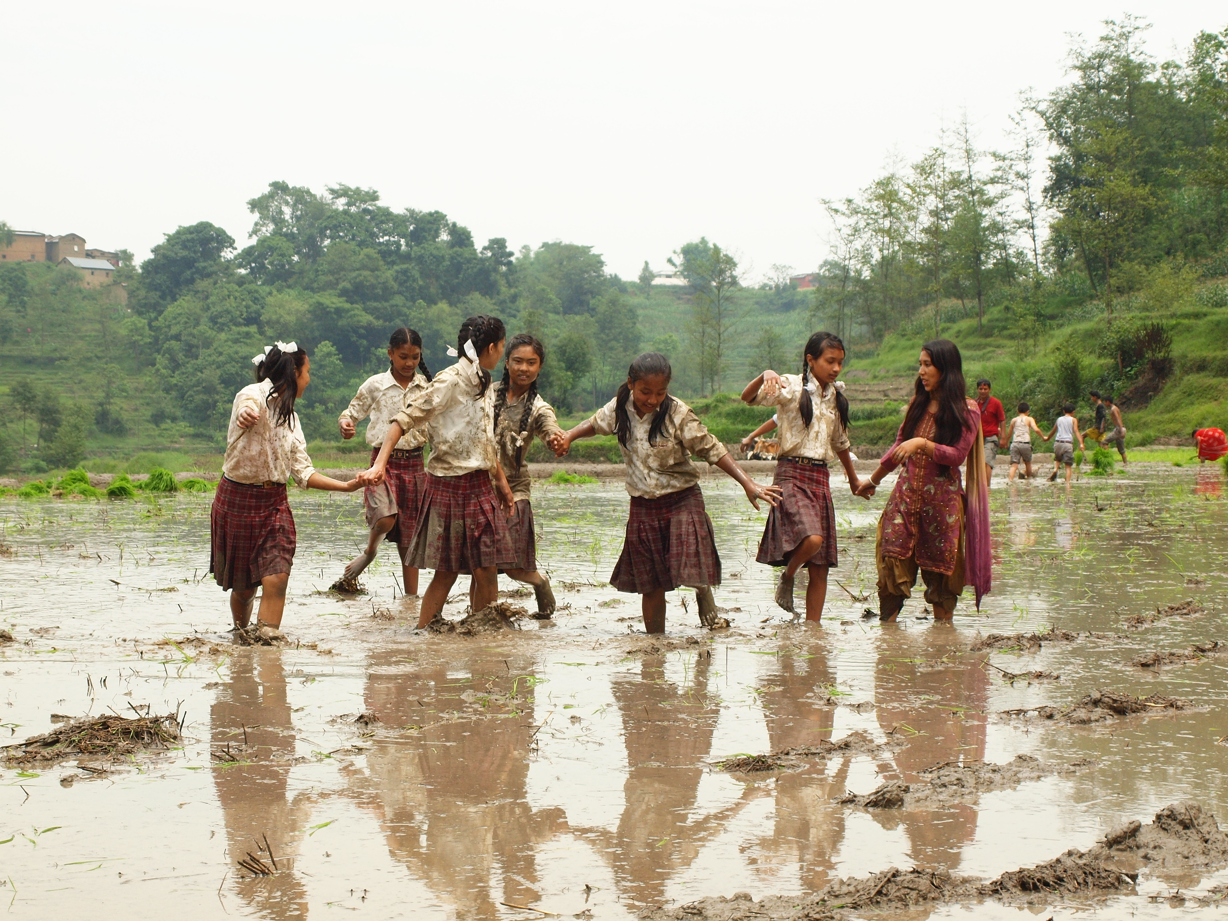 Rice Festival.