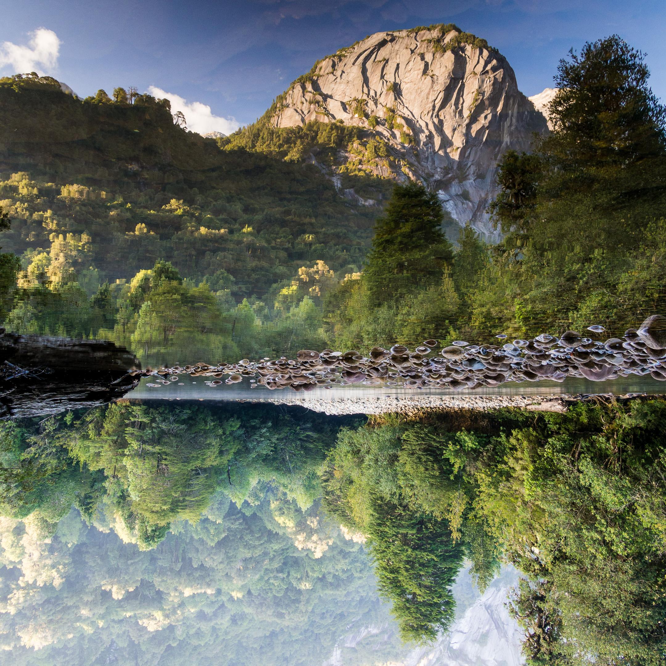 Patagonia - 130202 - 2026224.jpg