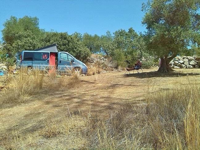 Josien onder de olijfboom 25.jpg