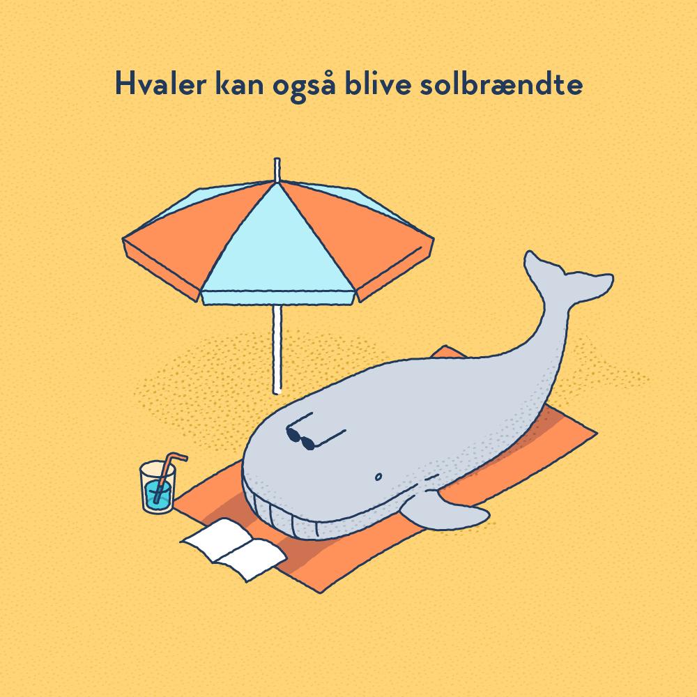 whales-tan_DA_square.png